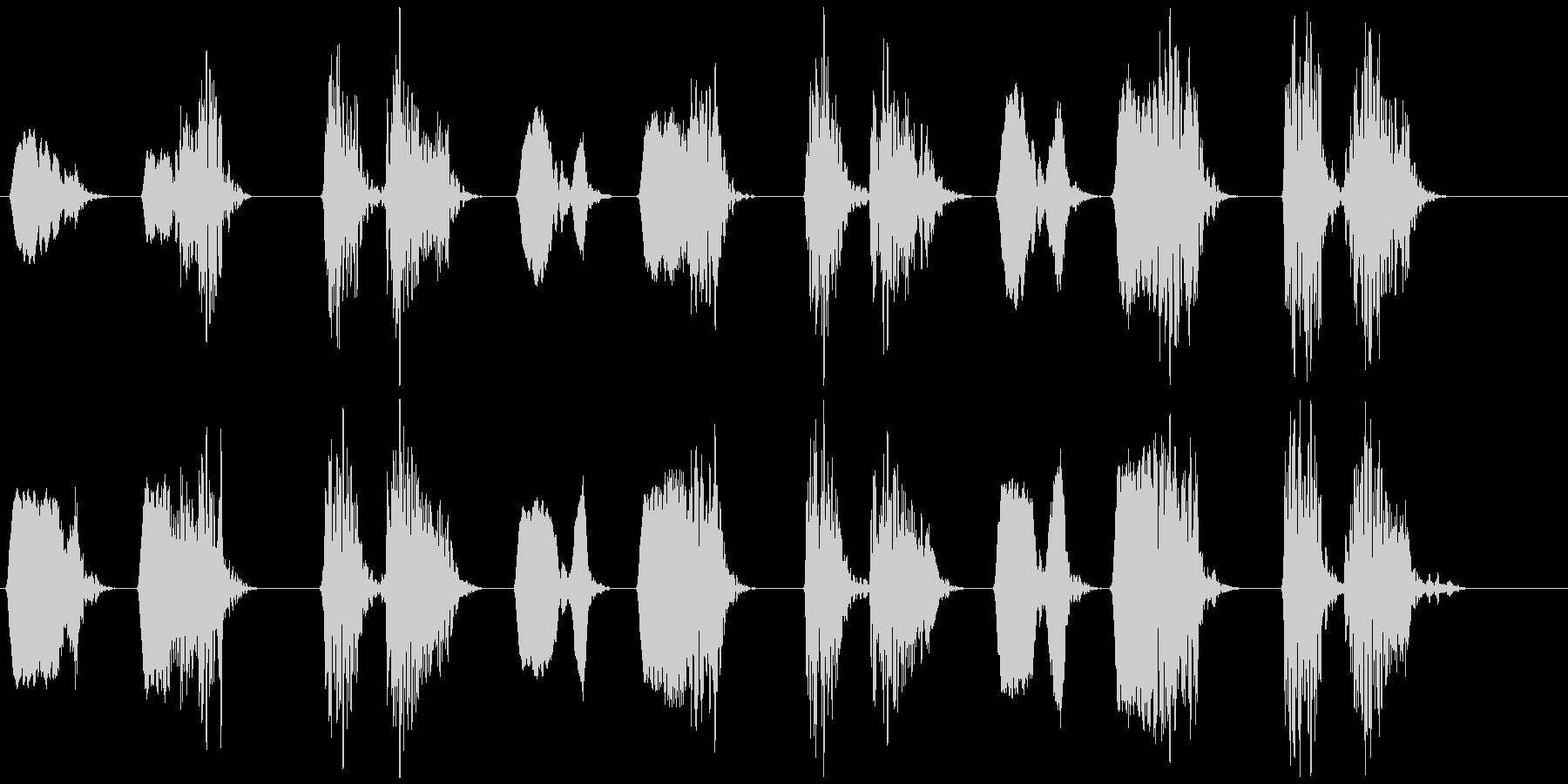 キジバト②  ホーホー ホッホーの未再生の波形