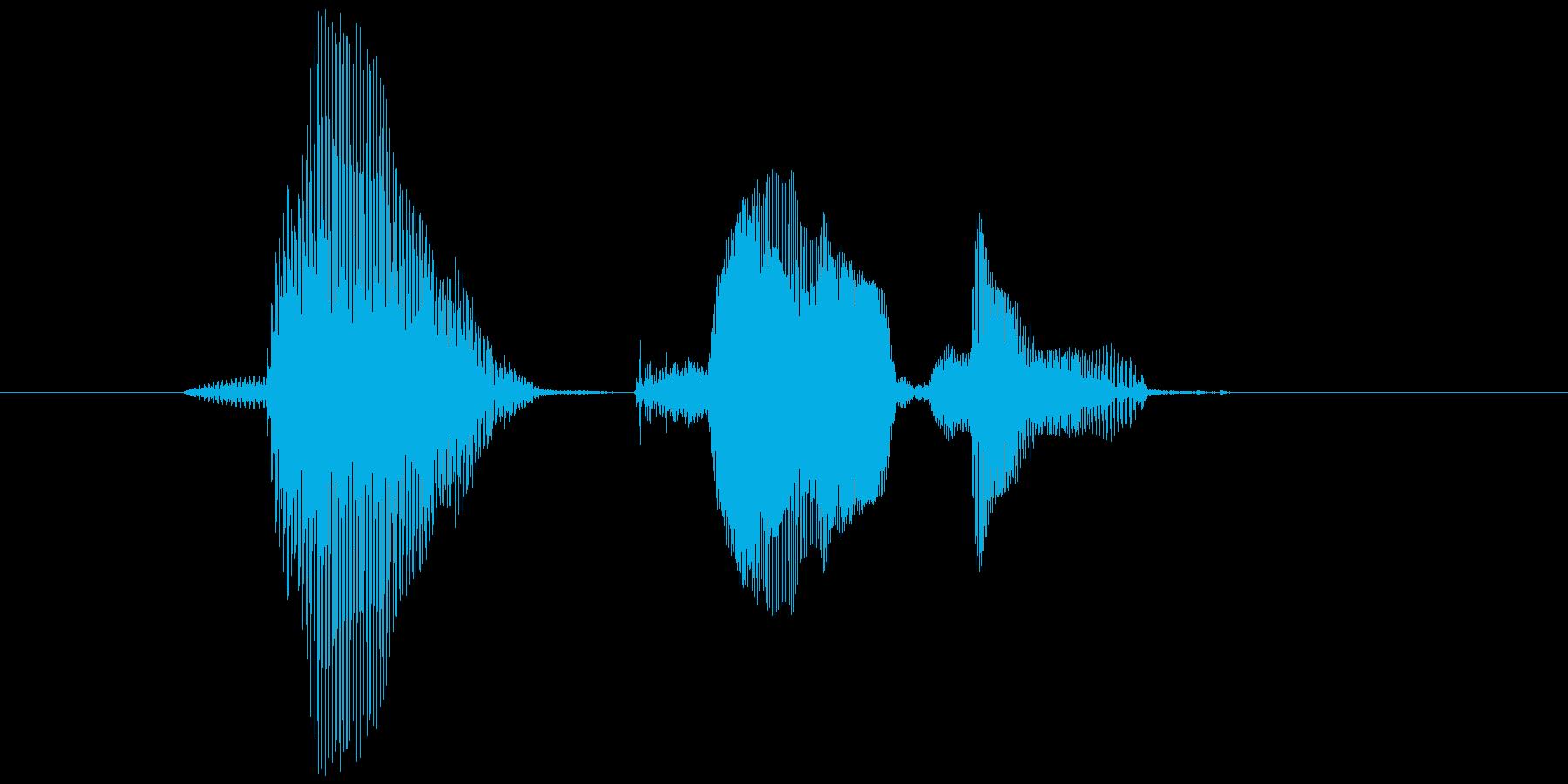 第九問(だいきゅうもん)の再生済みの波形
