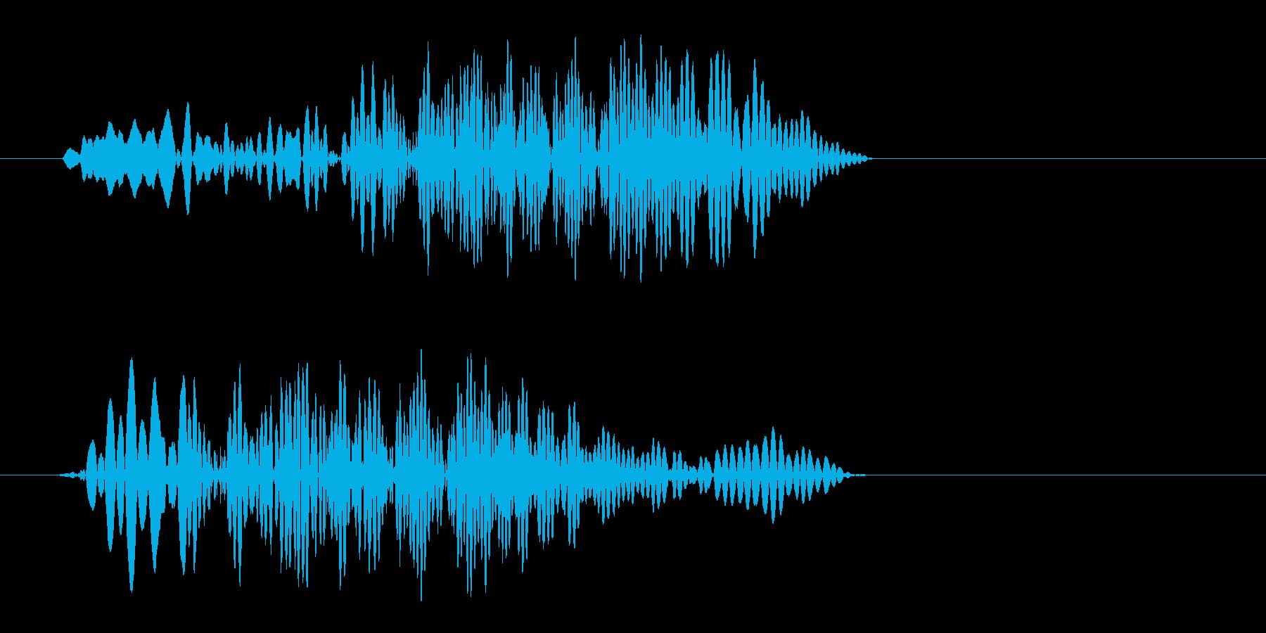 キュッ、潰れたような、押されたような音の再生済みの波形