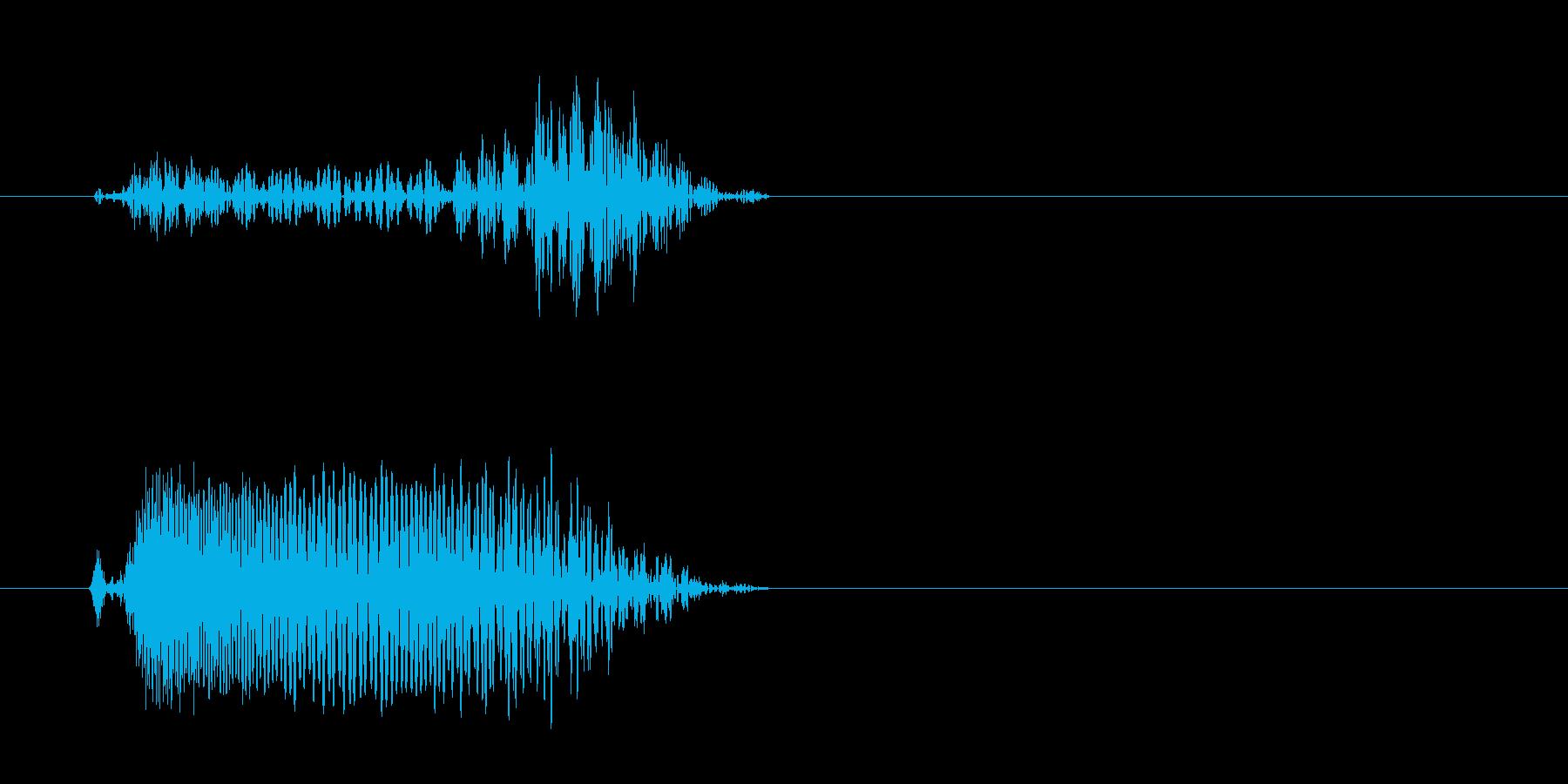 チュパッ(短い音色)の再生済みの波形