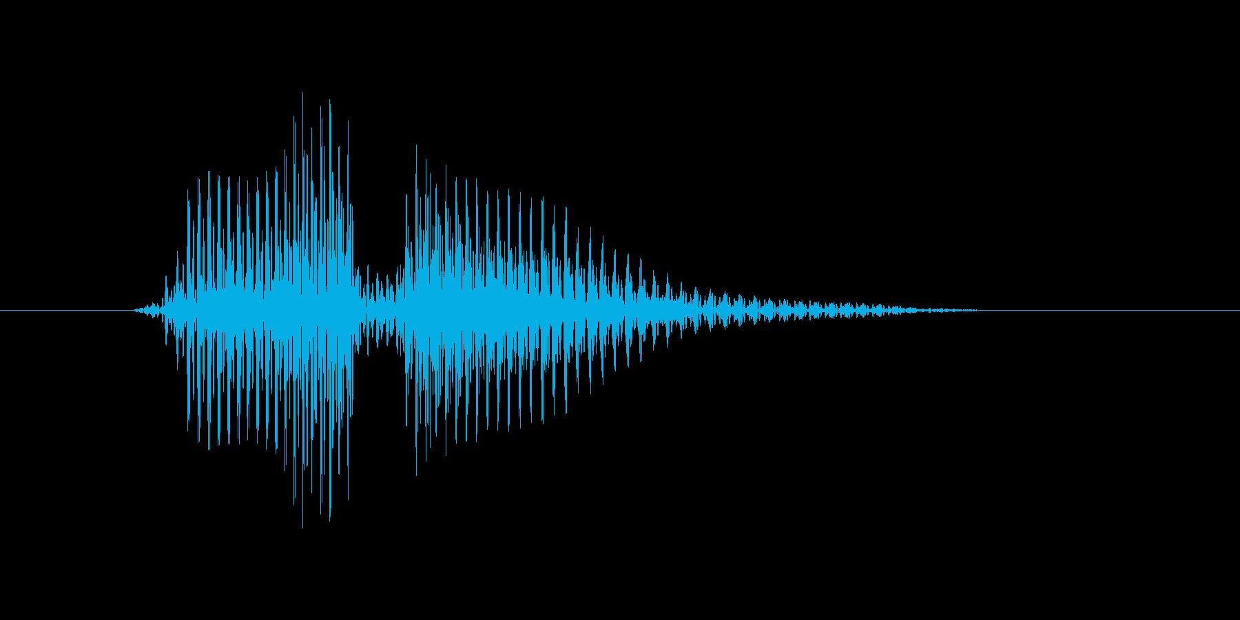 ボレーの再生済みの波形