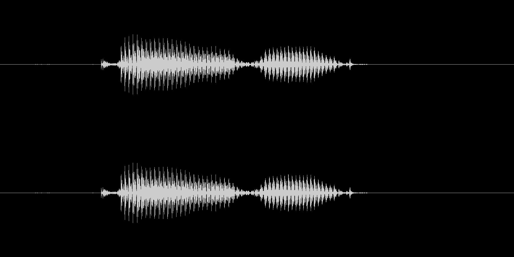 【干支】酉の未再生の波形