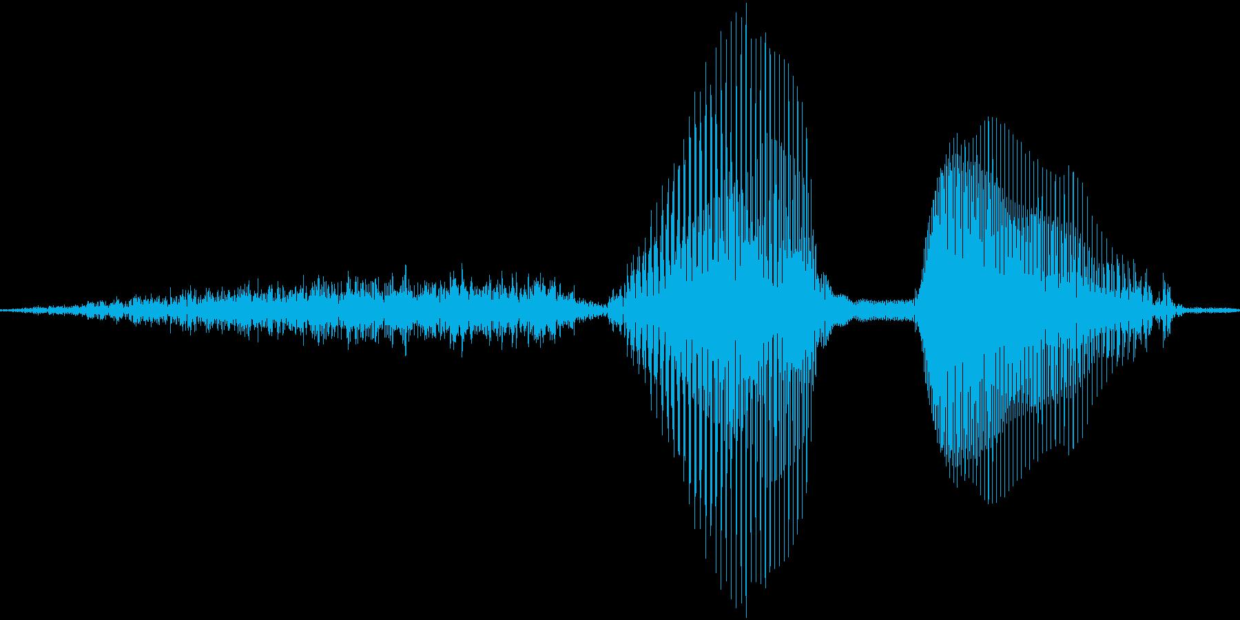 それっ!【攻撃、掛け声】の再生済みの波形
