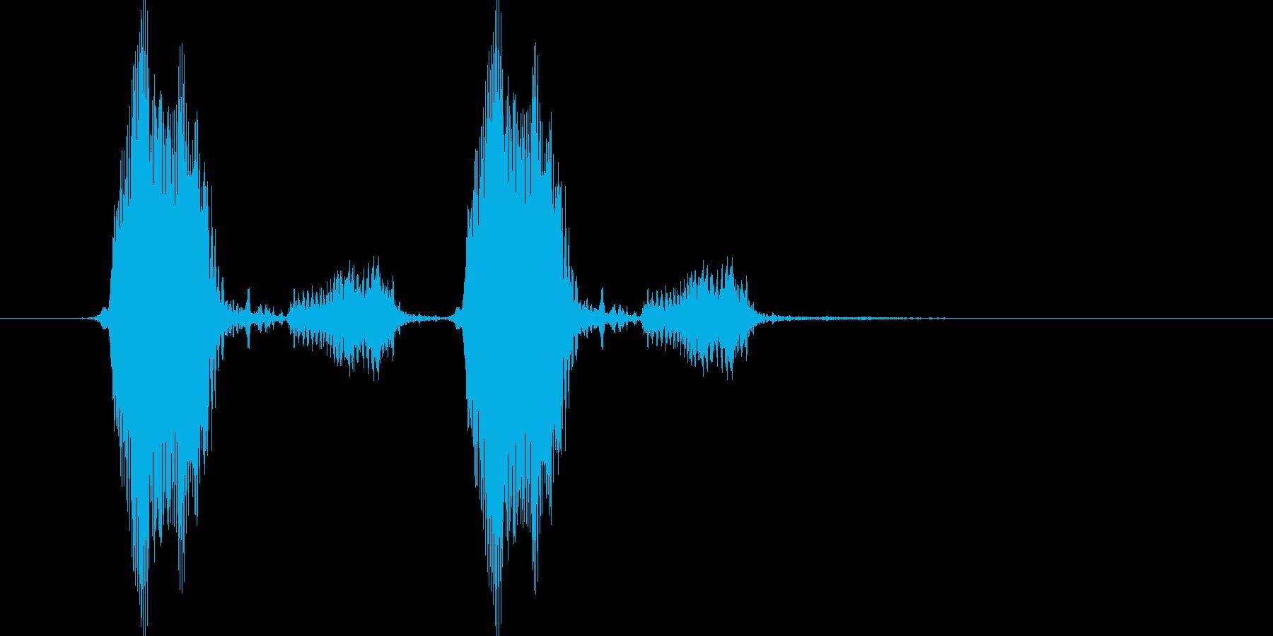 きゅっきゅっ(お皿をこする)の再生済みの波形