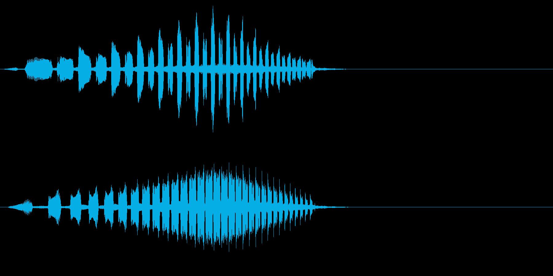 ピッの連音(スタート音)の再生済みの波形