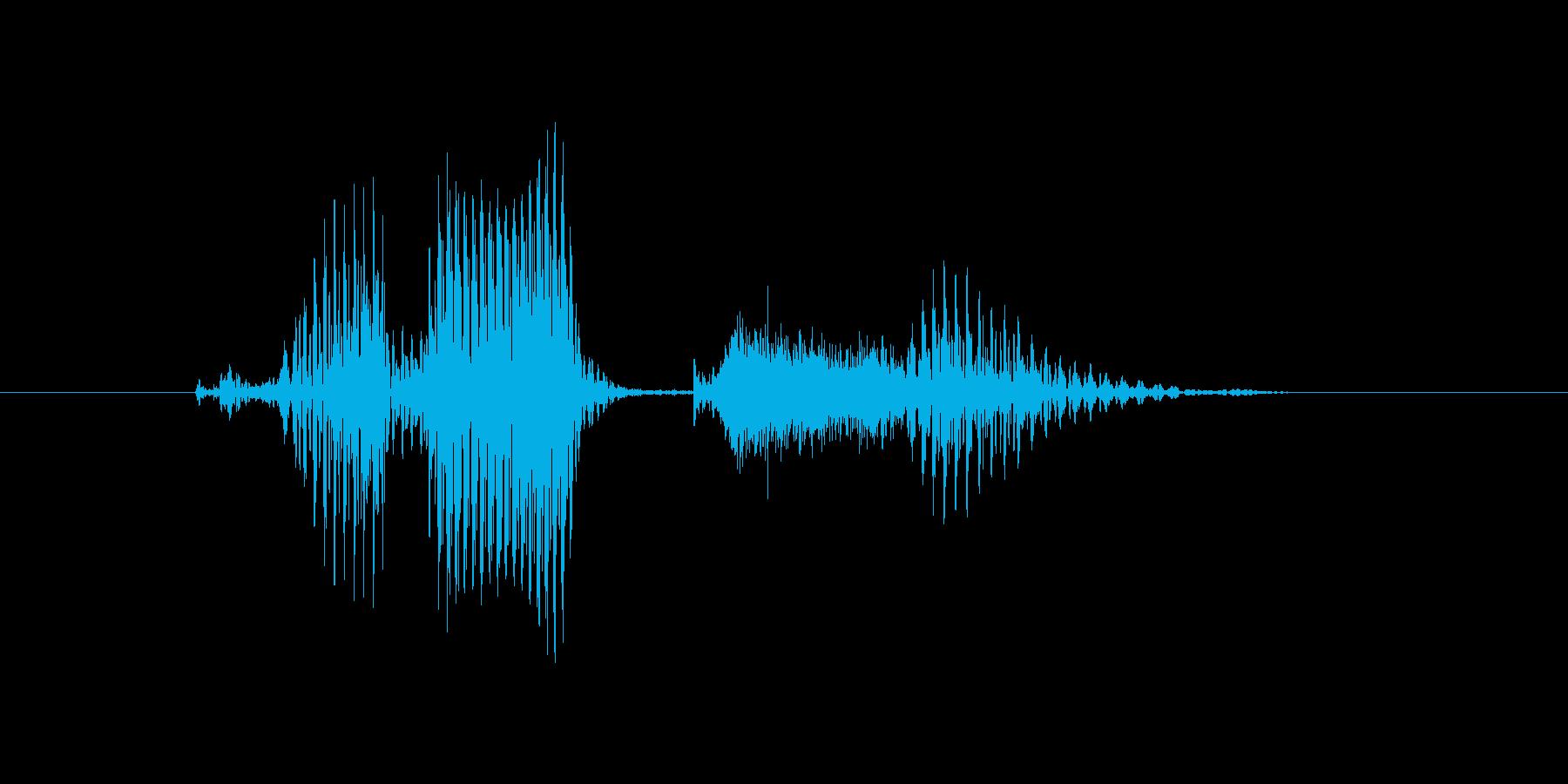 コレクションの再生済みの波形