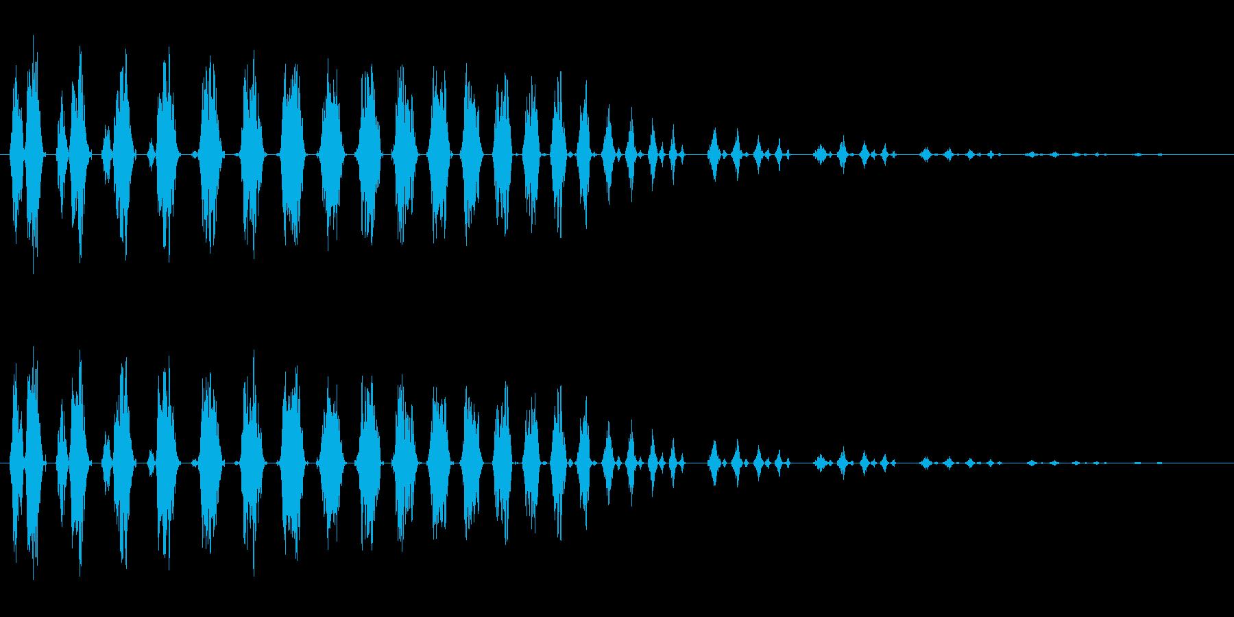 ビチョビチョビチョ(高速で移動する音)の再生済みの波形