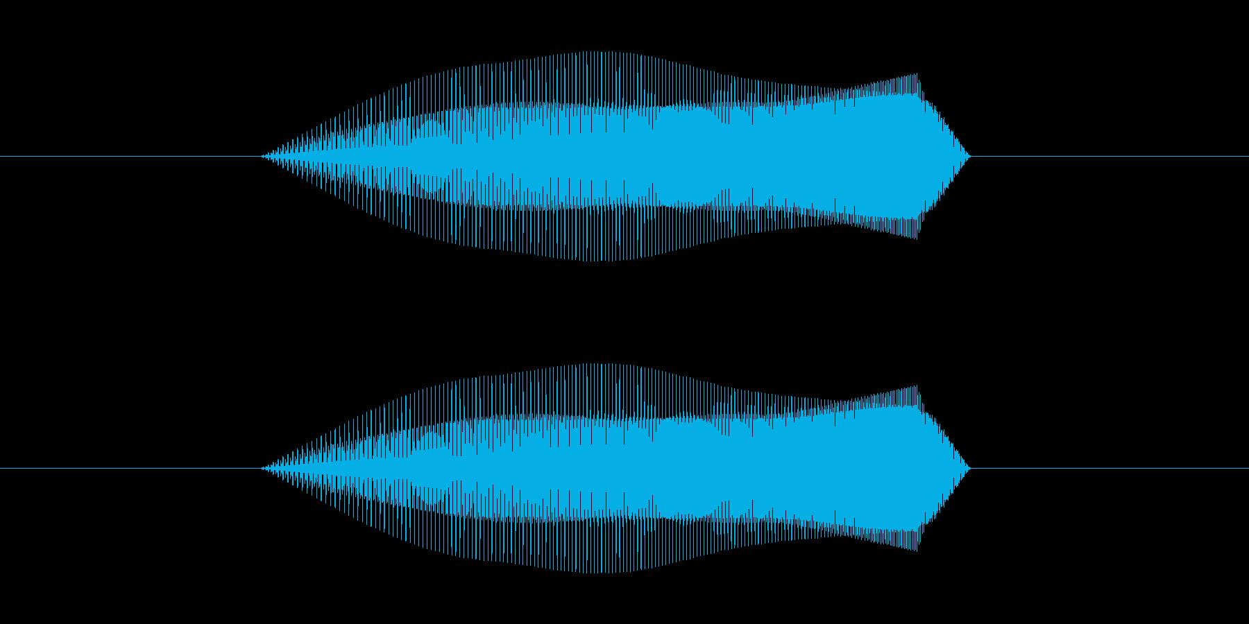 モォ~(牛の鳴き声)の再生済みの波形