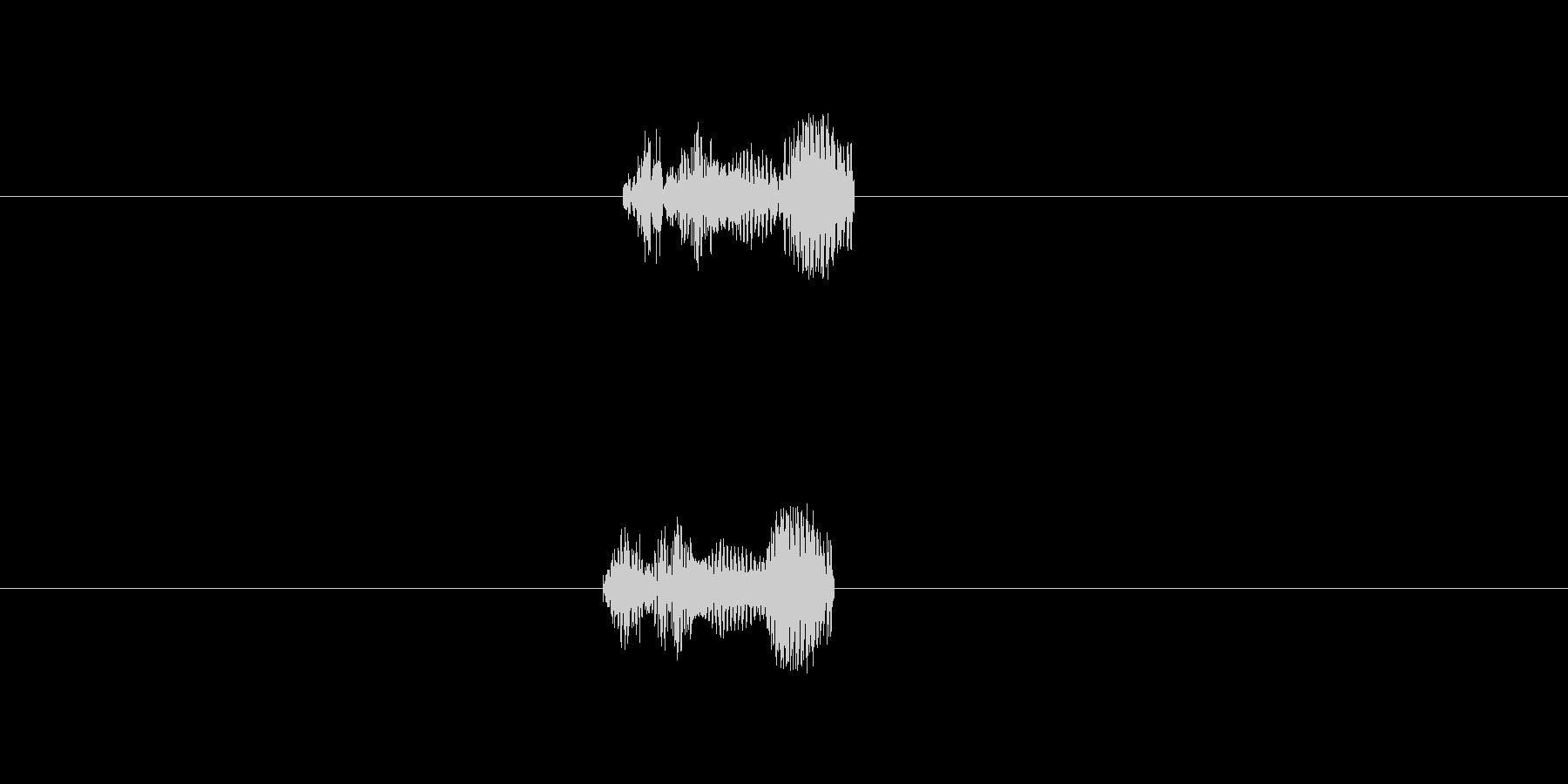 チュー(踏んじゃた。)の未再生の波形