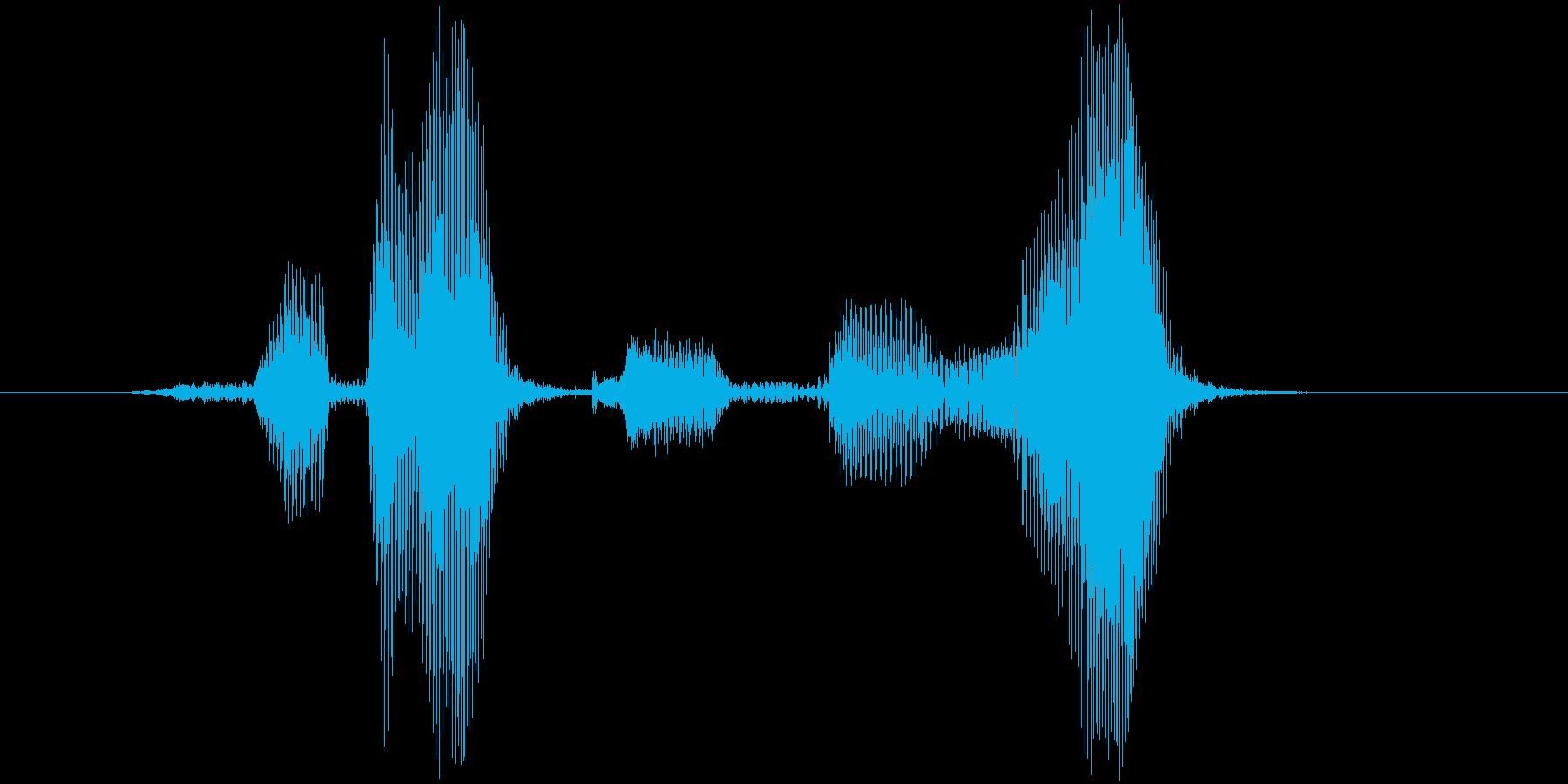 開けゴマの再生済みの波形