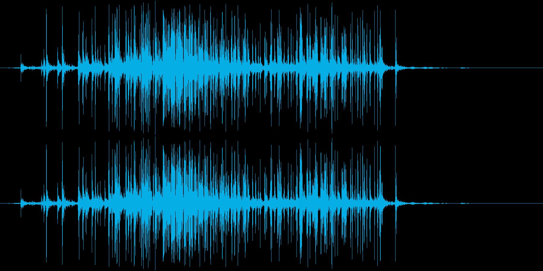 ベリベリ(ベルクロ)の再生済みの波形