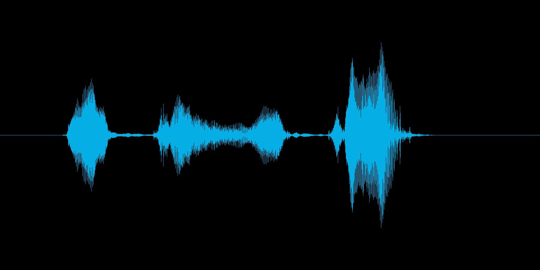いちゃいちゃ♪の再生済みの波形