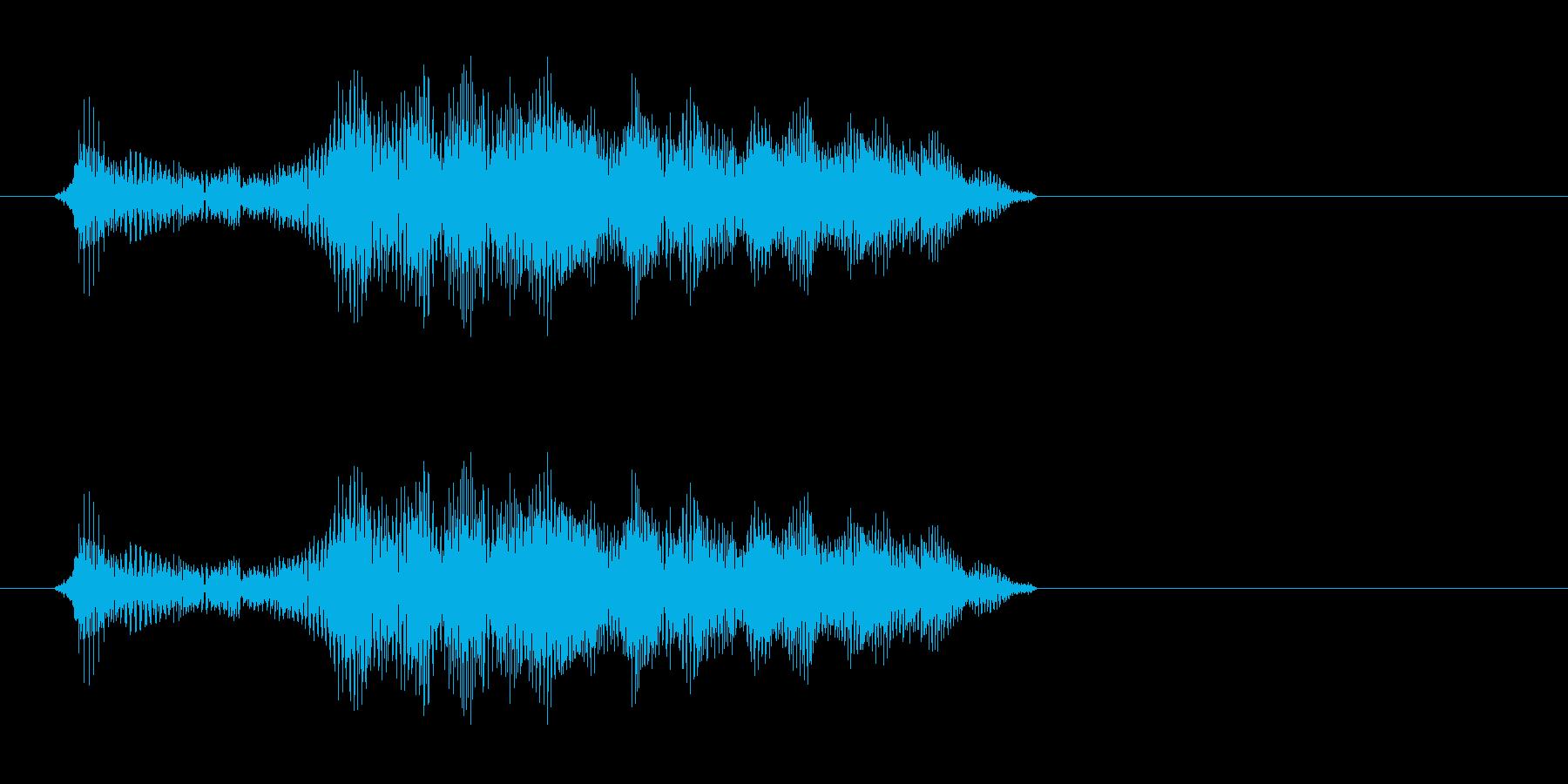 ピキーッ(高音で鋭い効果音)の再生済みの波形