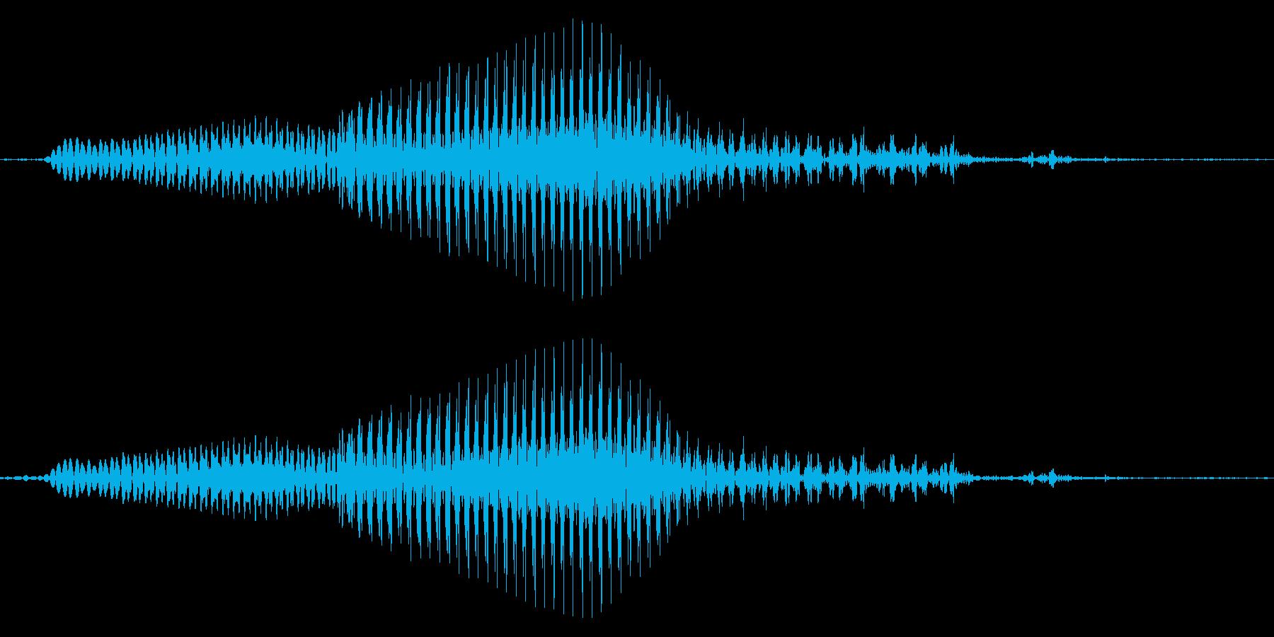 めっ!の再生済みの波形