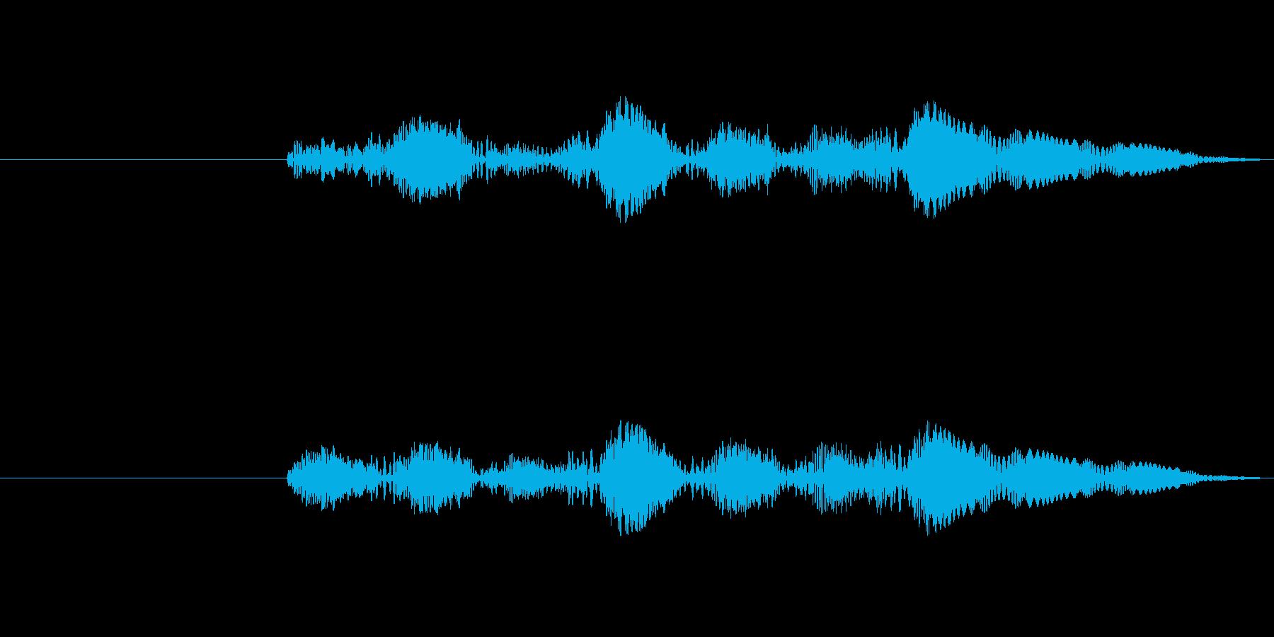 プルプル音(スライム・ゼリー系)5の再生済みの波形