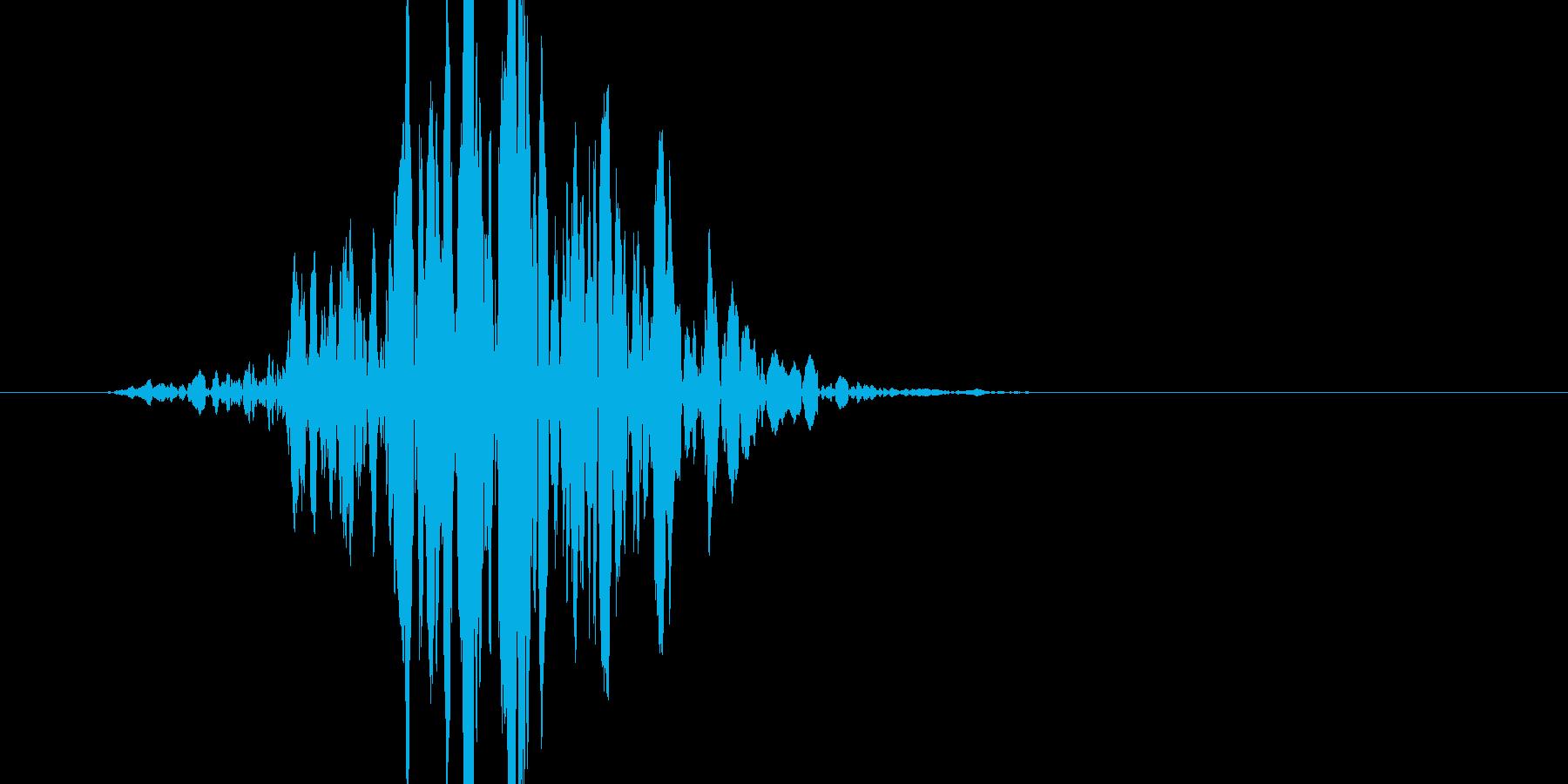 ブン! よく有るバットの素振り音です。の再生済みの波形