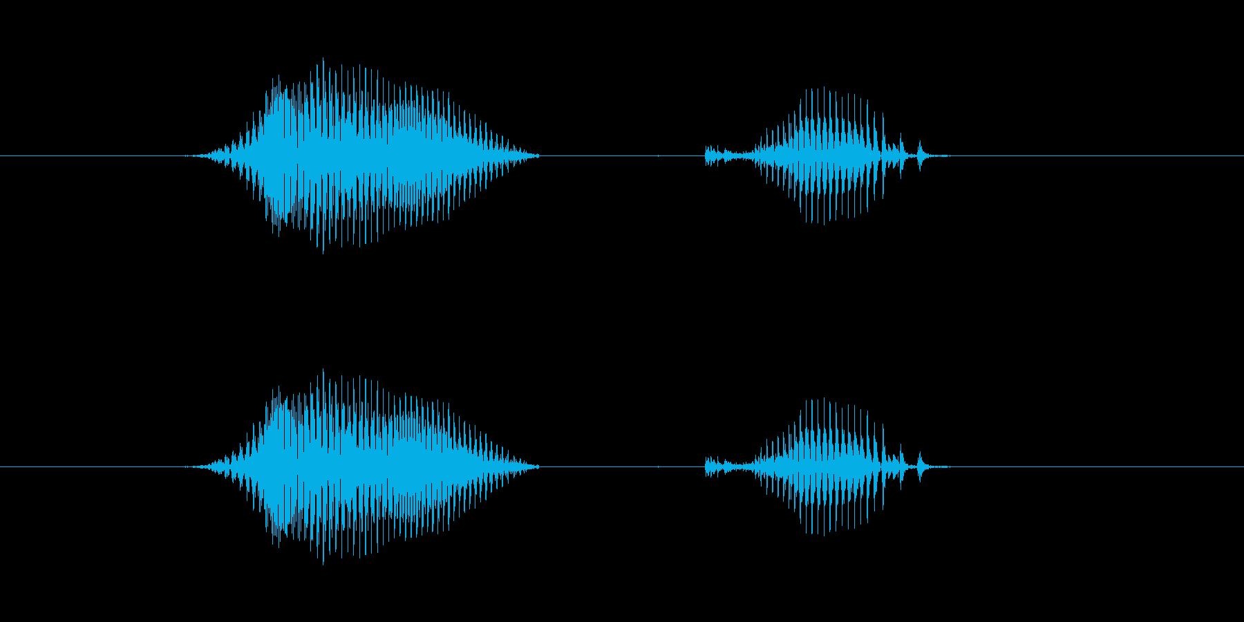 【日】8日の再生済みの波形
