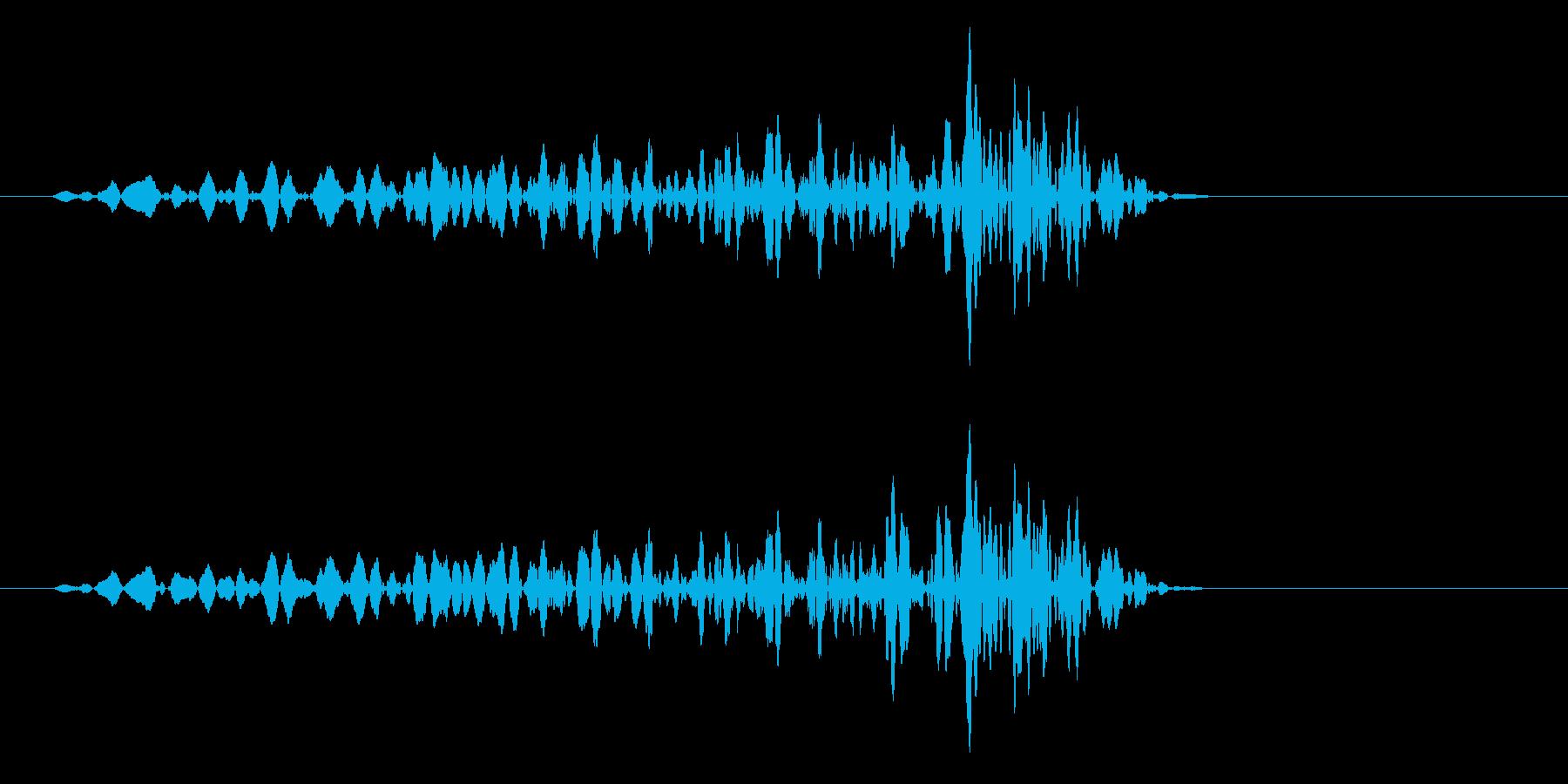 グリッ(ダメージを受ける効果音)の再生済みの波形