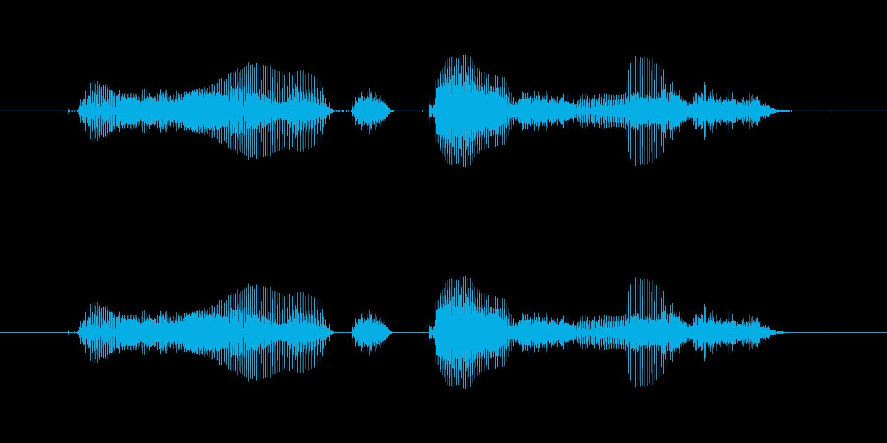 【時報・時間】2時をお伝えしますの再生済みの波形