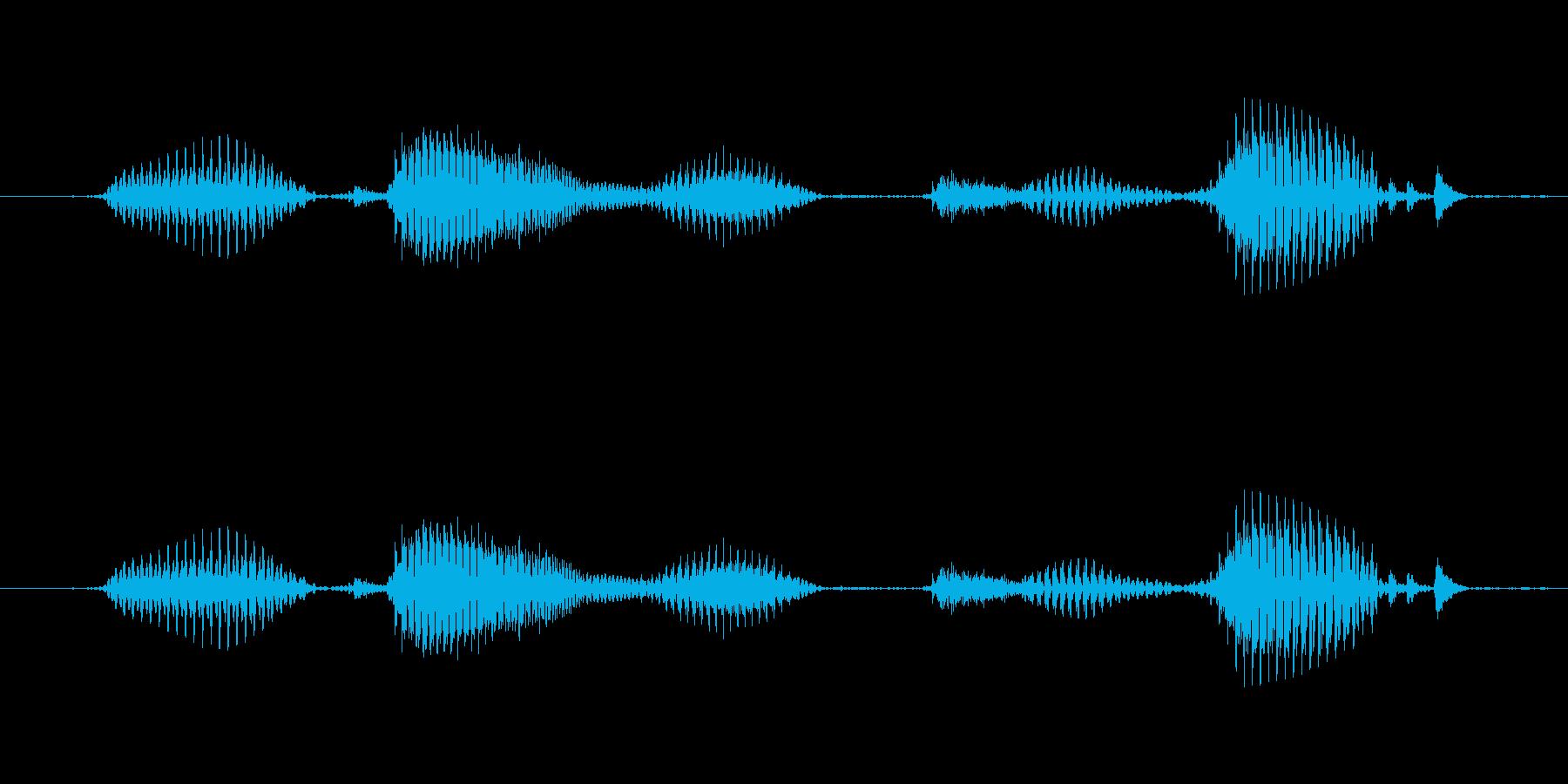 【日数・後】2ヶ月後の再生済みの波形