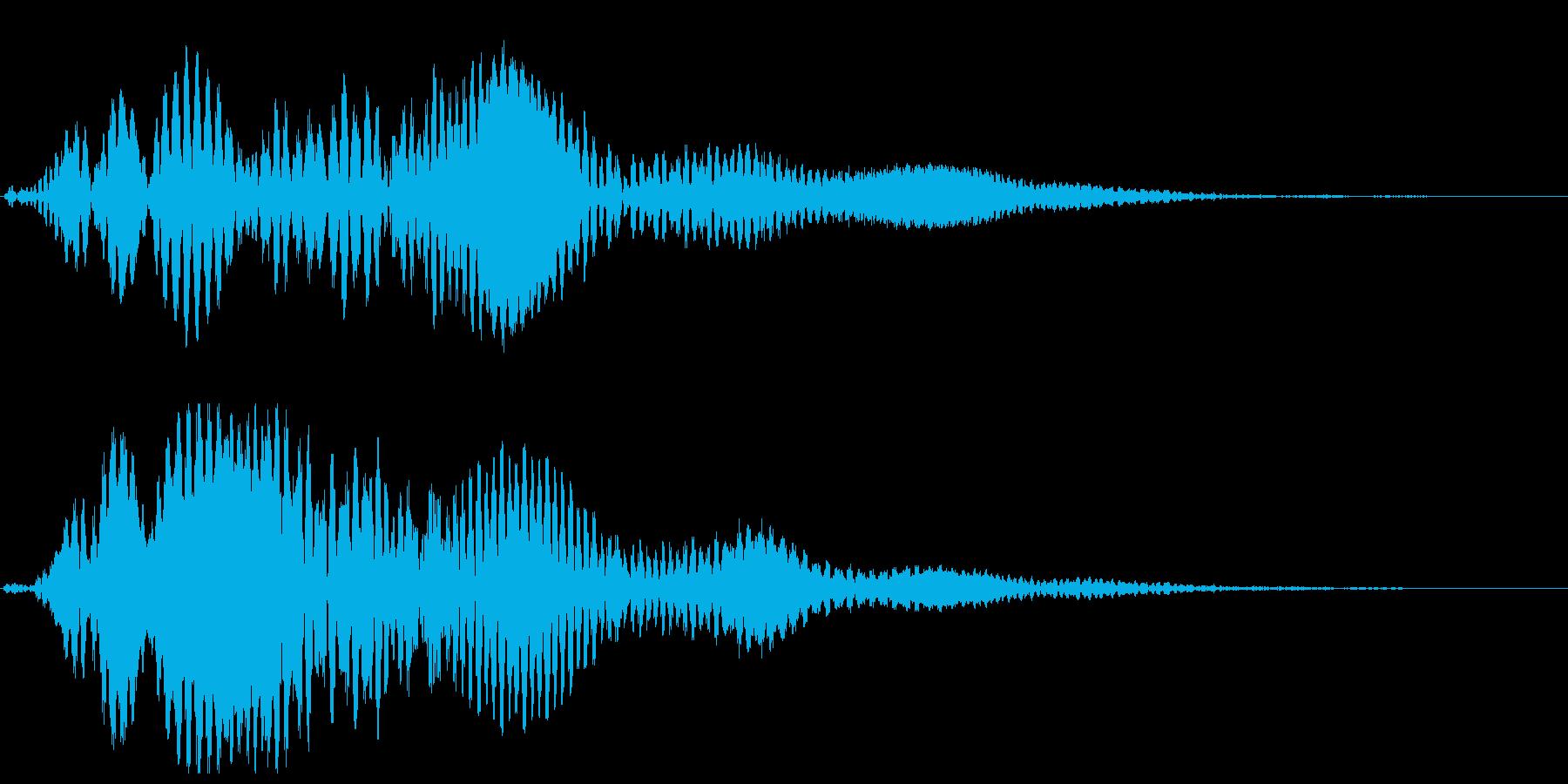 キイィイーン(鈴虫、金属が鳴る音)の再生済みの波形