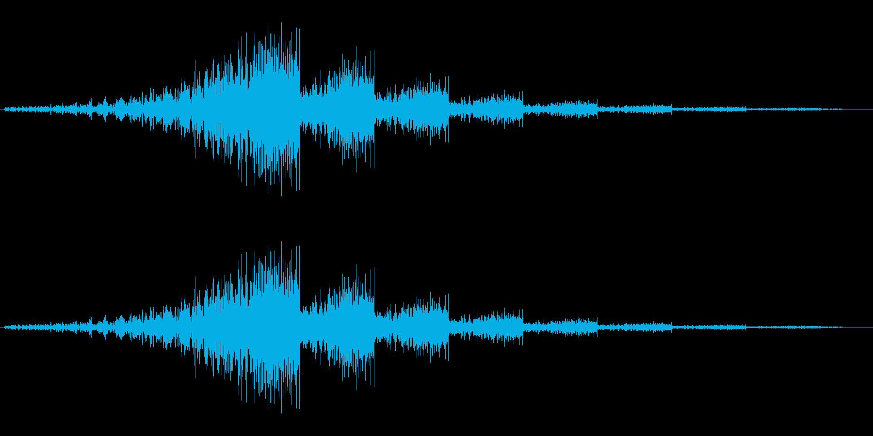 シューウワンワンワン…【余韻あり移動音】の再生済みの波形