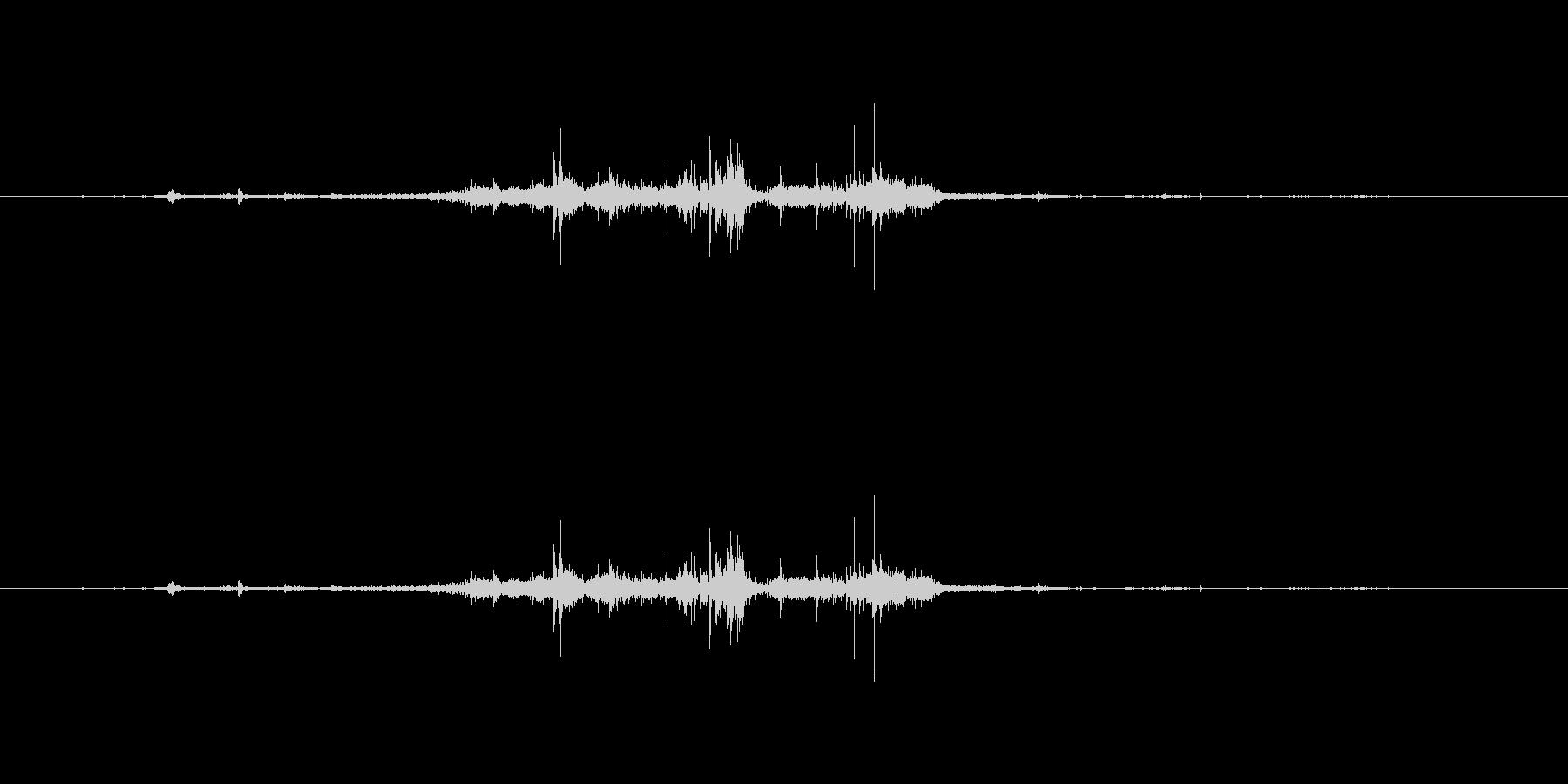 【マイク収録】シャクリとリンゴをかじる音の未再生の波形