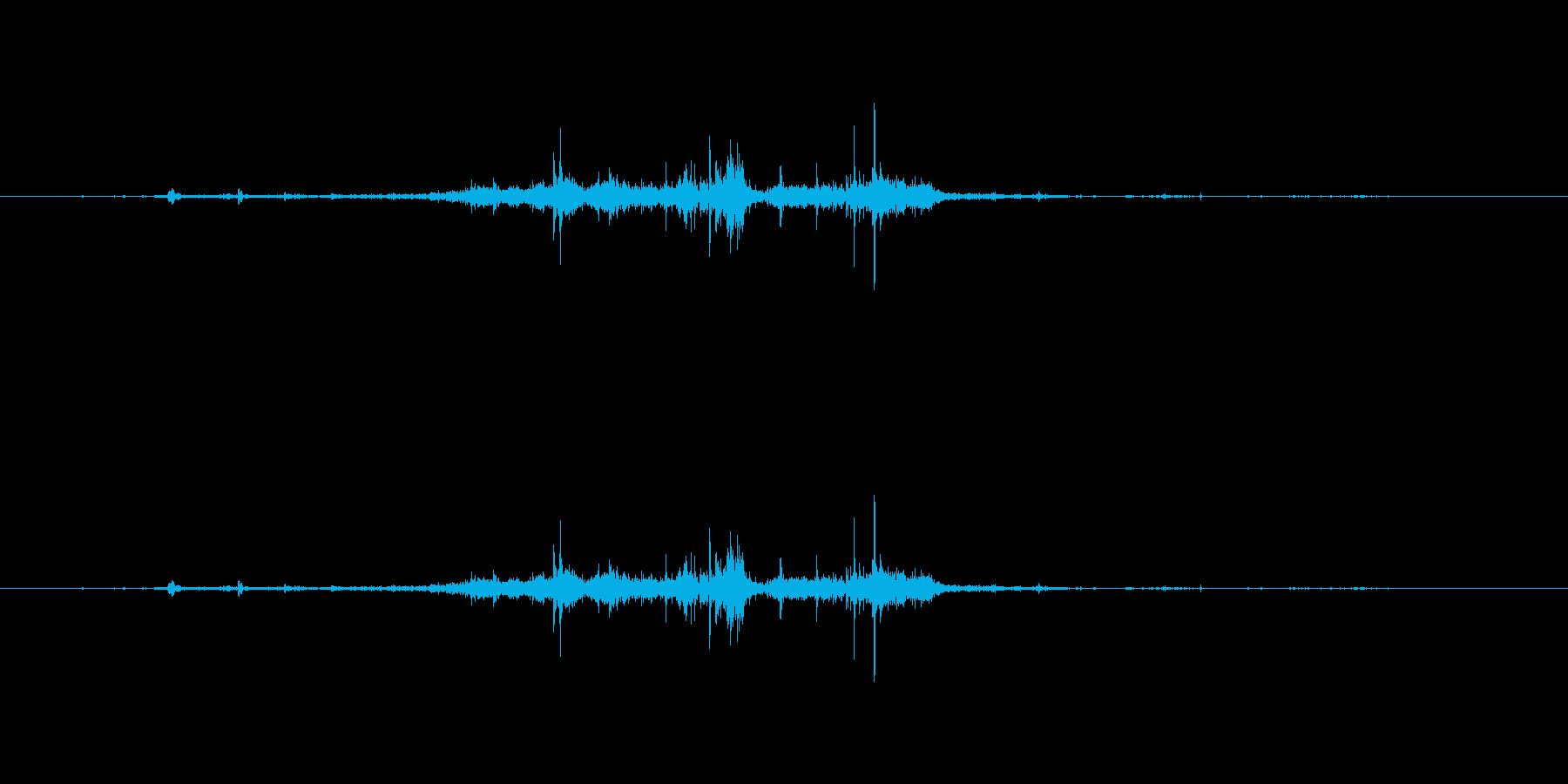 【マイク収録】シャクリとリンゴをかじる音の再生済みの波形
