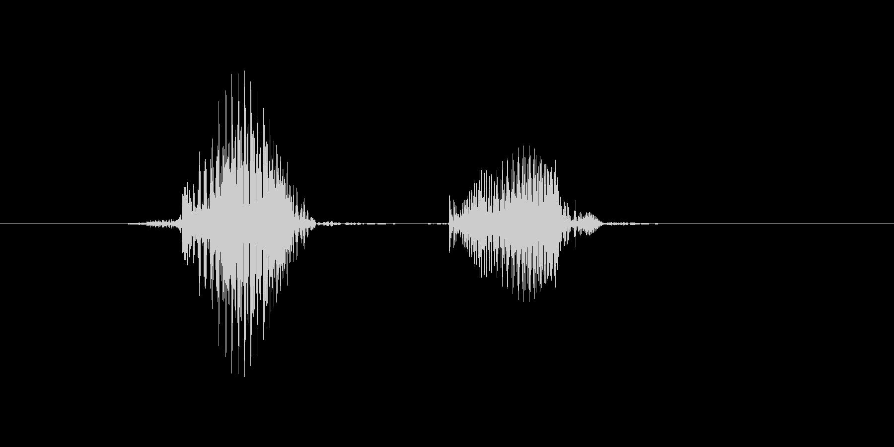 百(ひゃく)の未再生の波形