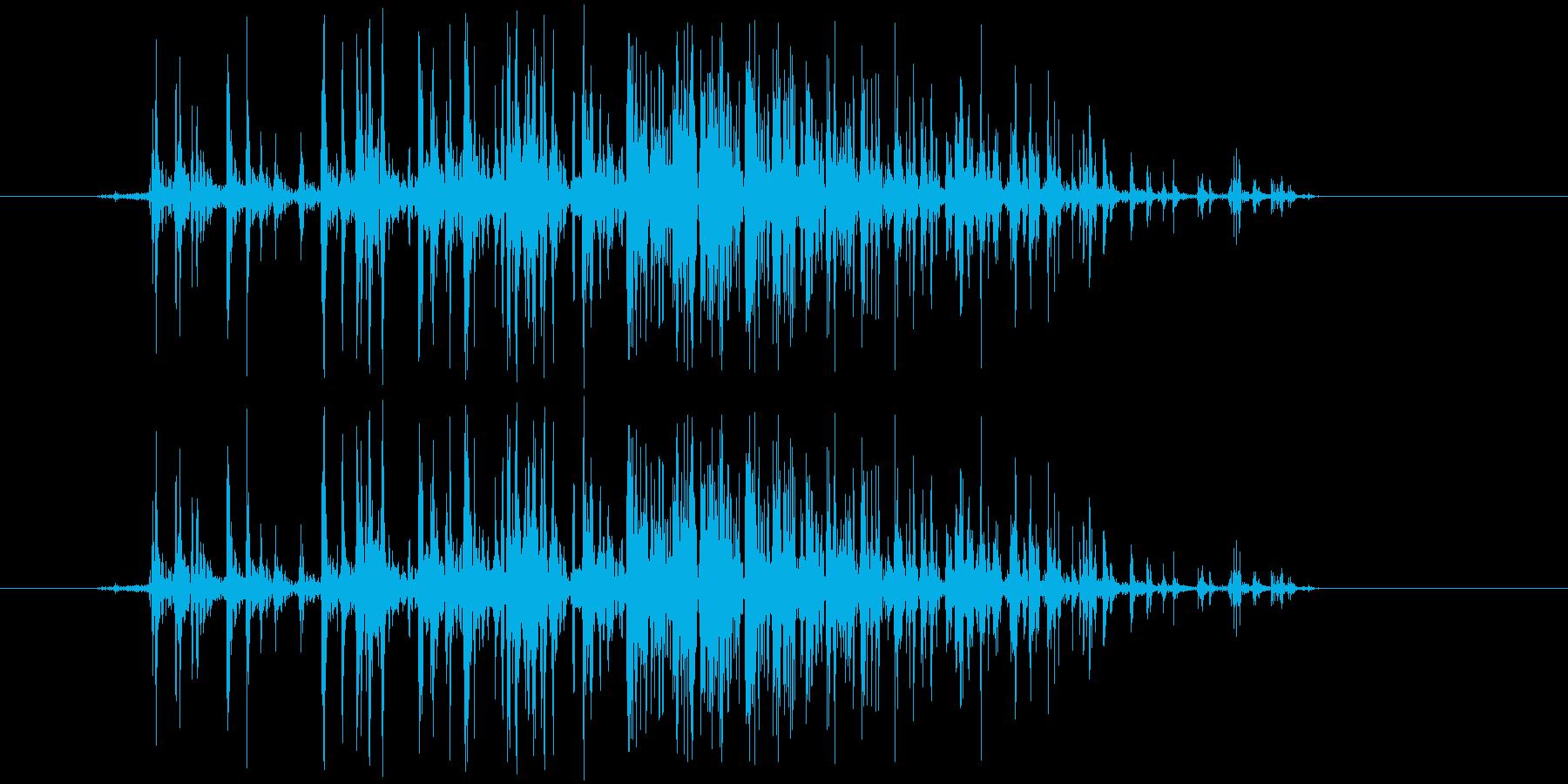 ベリ(ベルクロ)の再生済みの波形
