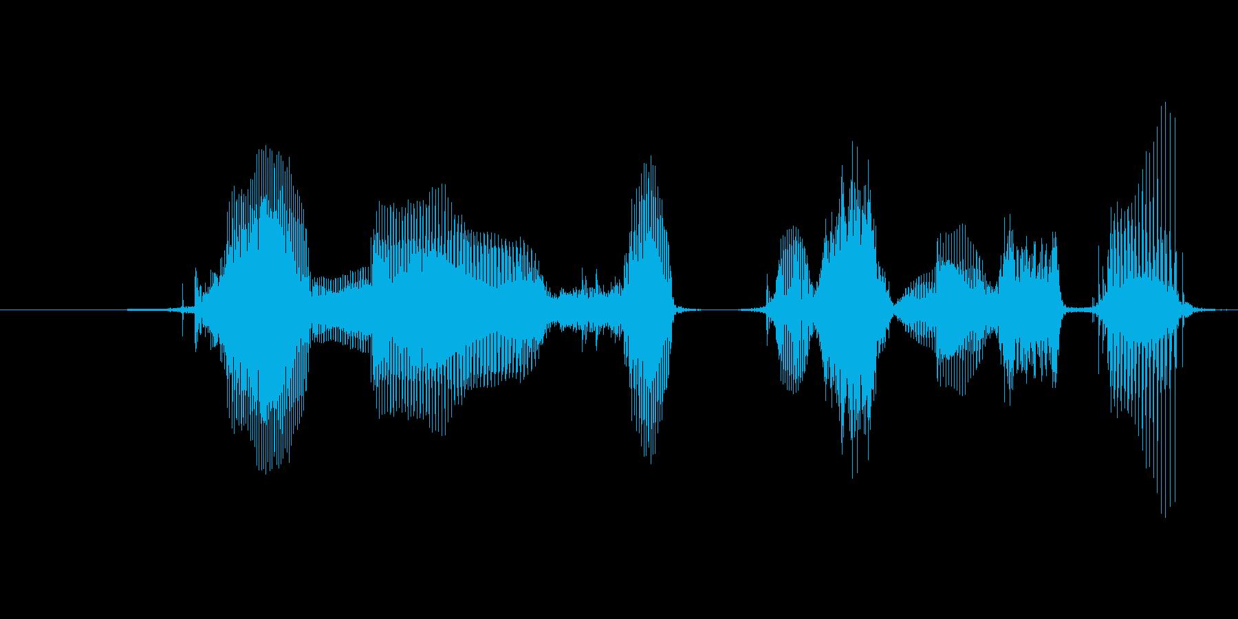 タイマーをセットしましたの再生済みの波形