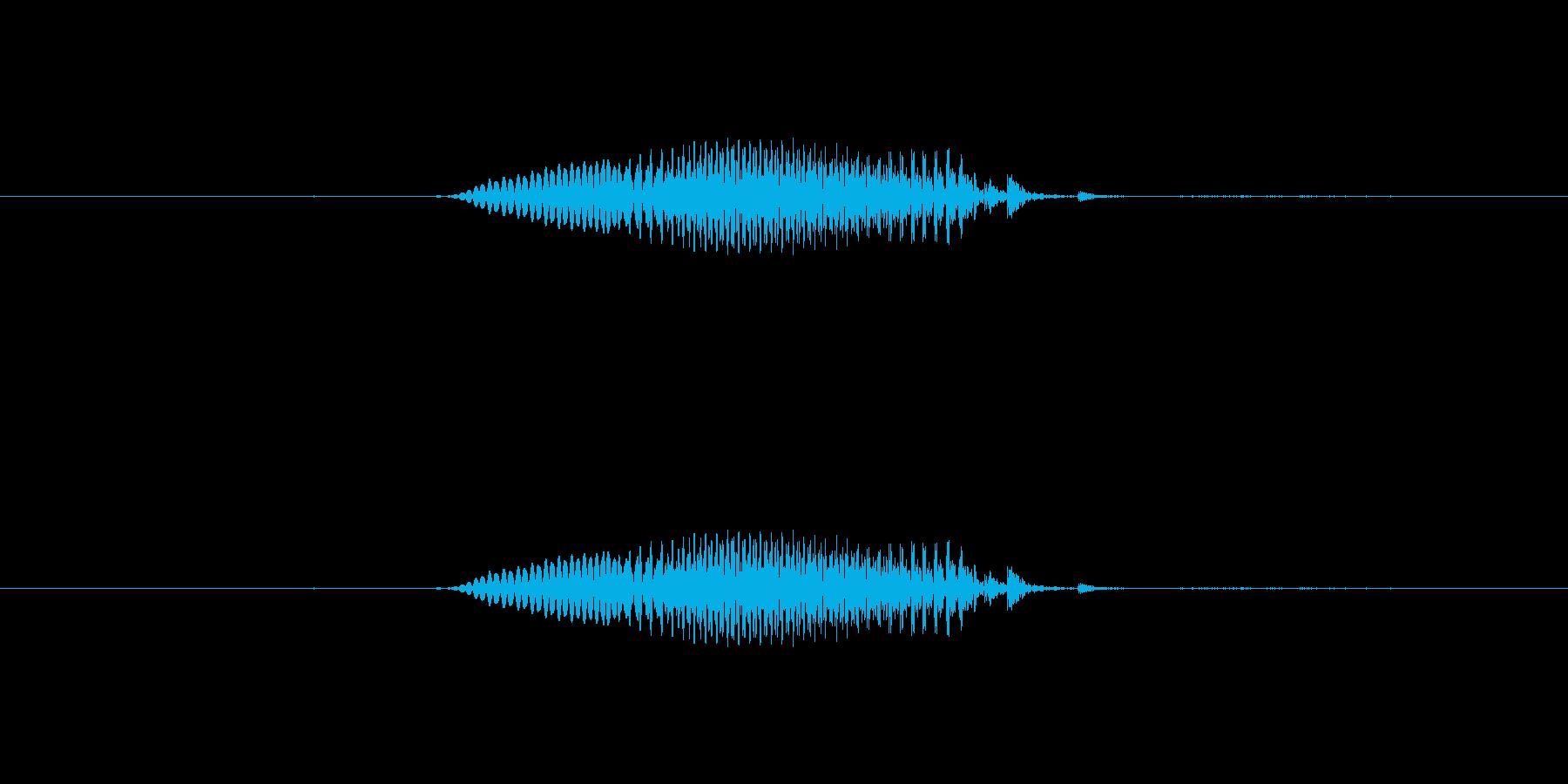 【干支】子の再生済みの波形