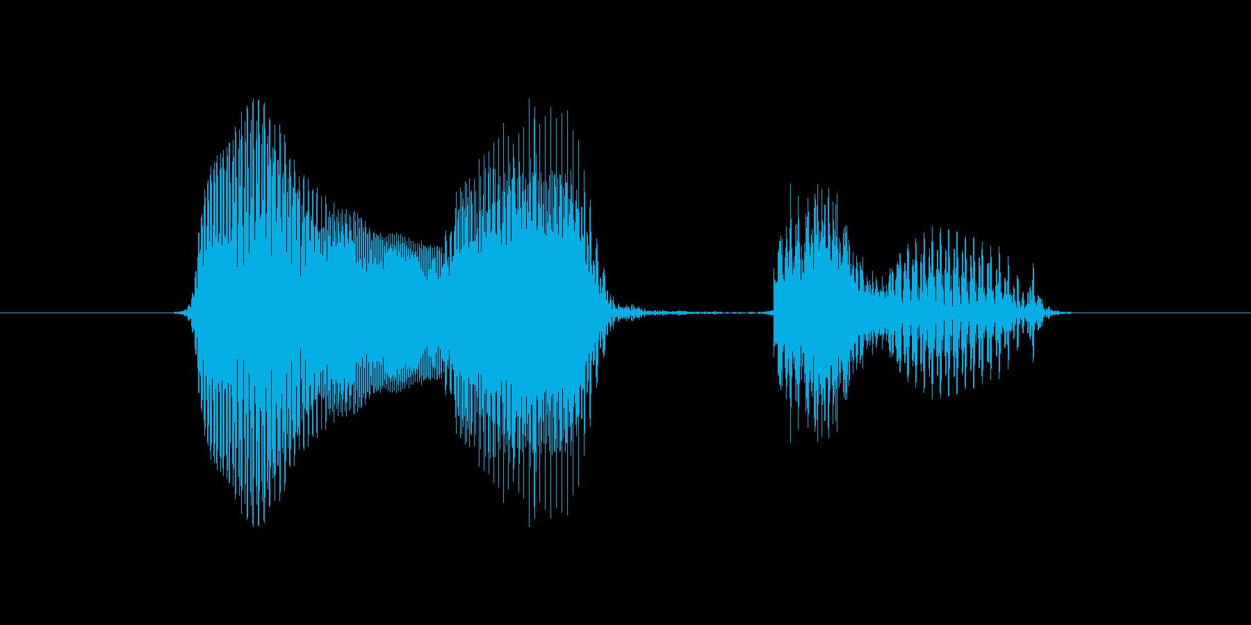 2月(2月・二月)の再生済みの波形
