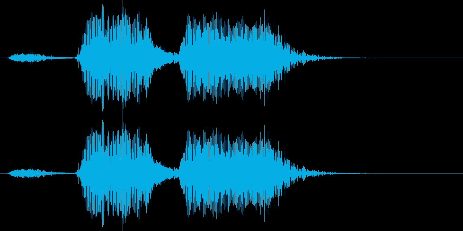 スタート(幼児)の再生済みの波形