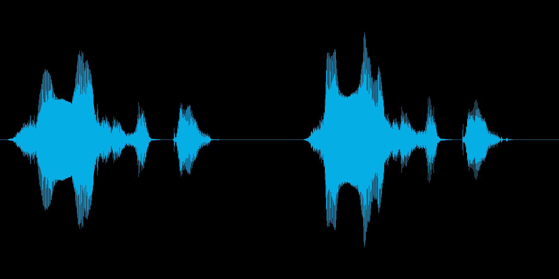 侵入者発見 女性の固めの音声の再生済みの波形