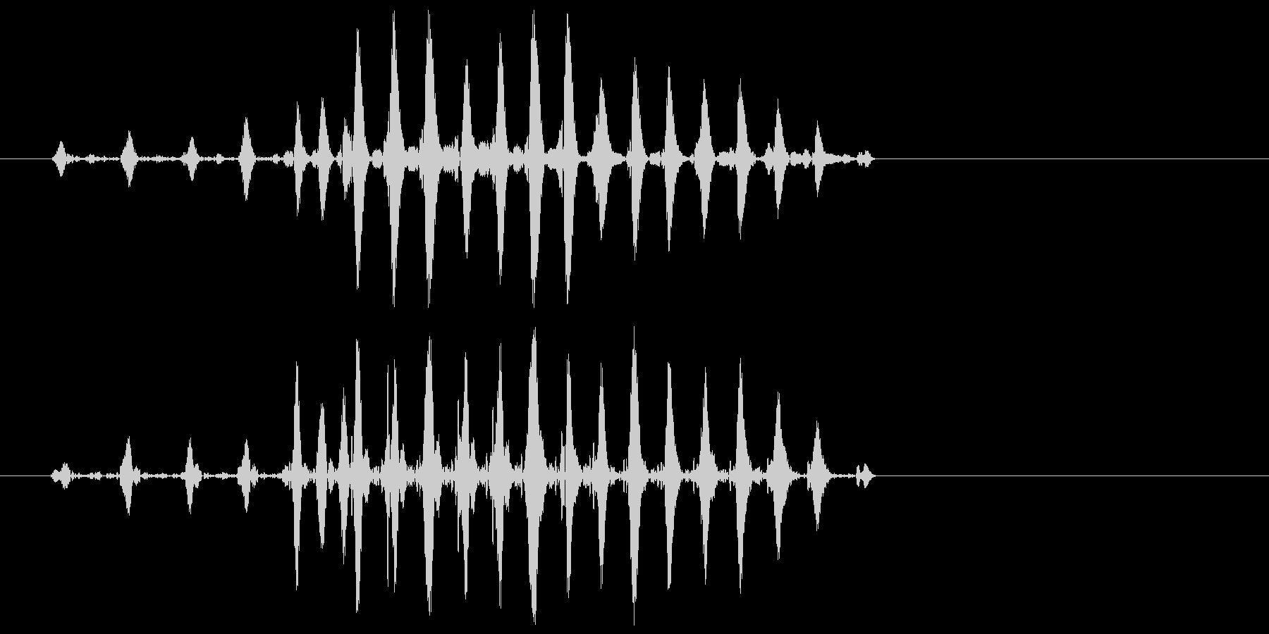 ガッ(アヒルや鴨などが鳴いたような音)の未再生の波形