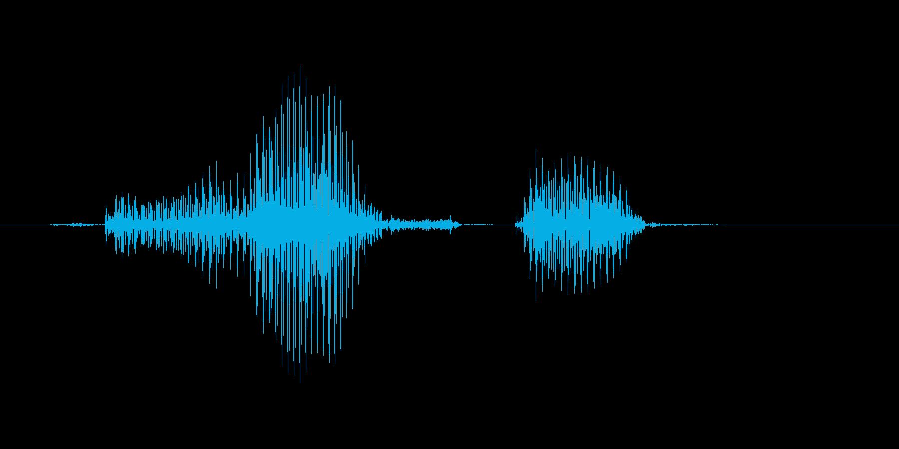 ドラフトの再生済みの波形