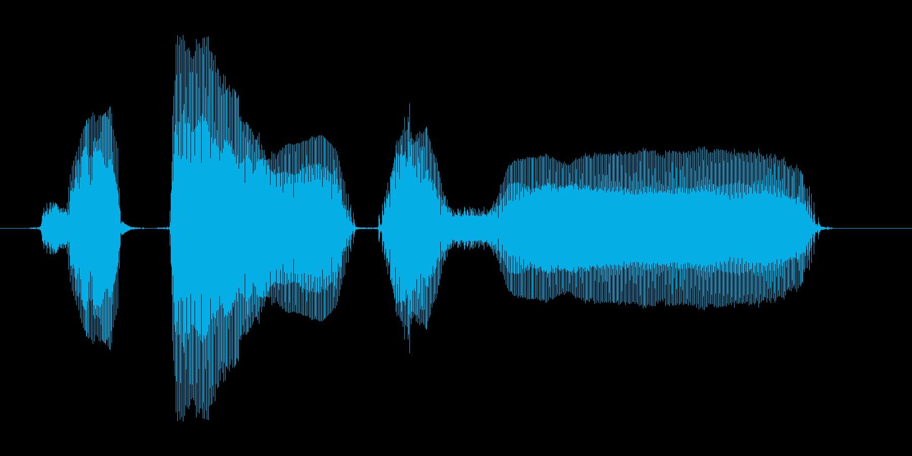 ボタン押す~。の再生済みの波形
