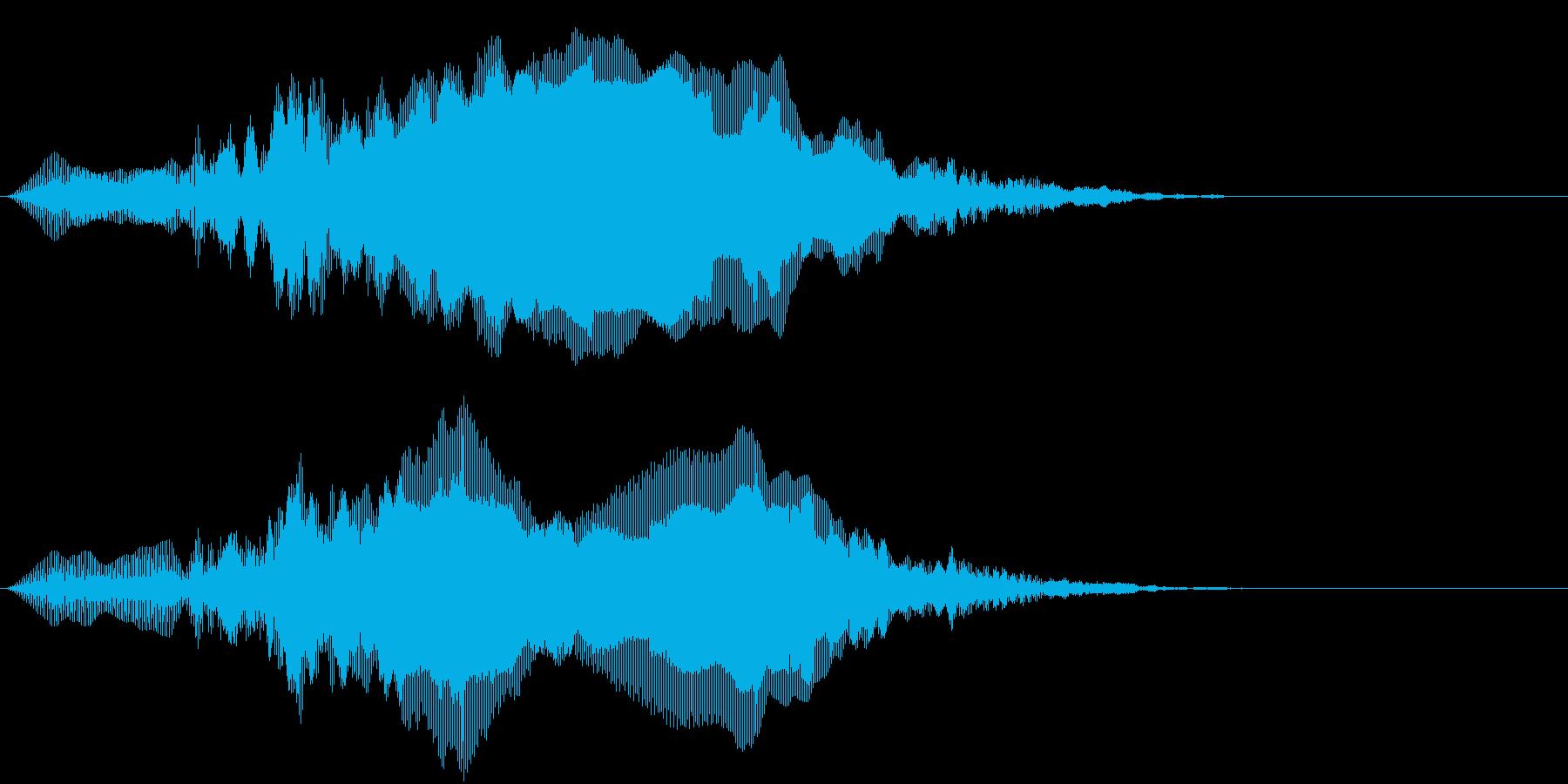 インドクジャクの鳴き声の再生済みの波形