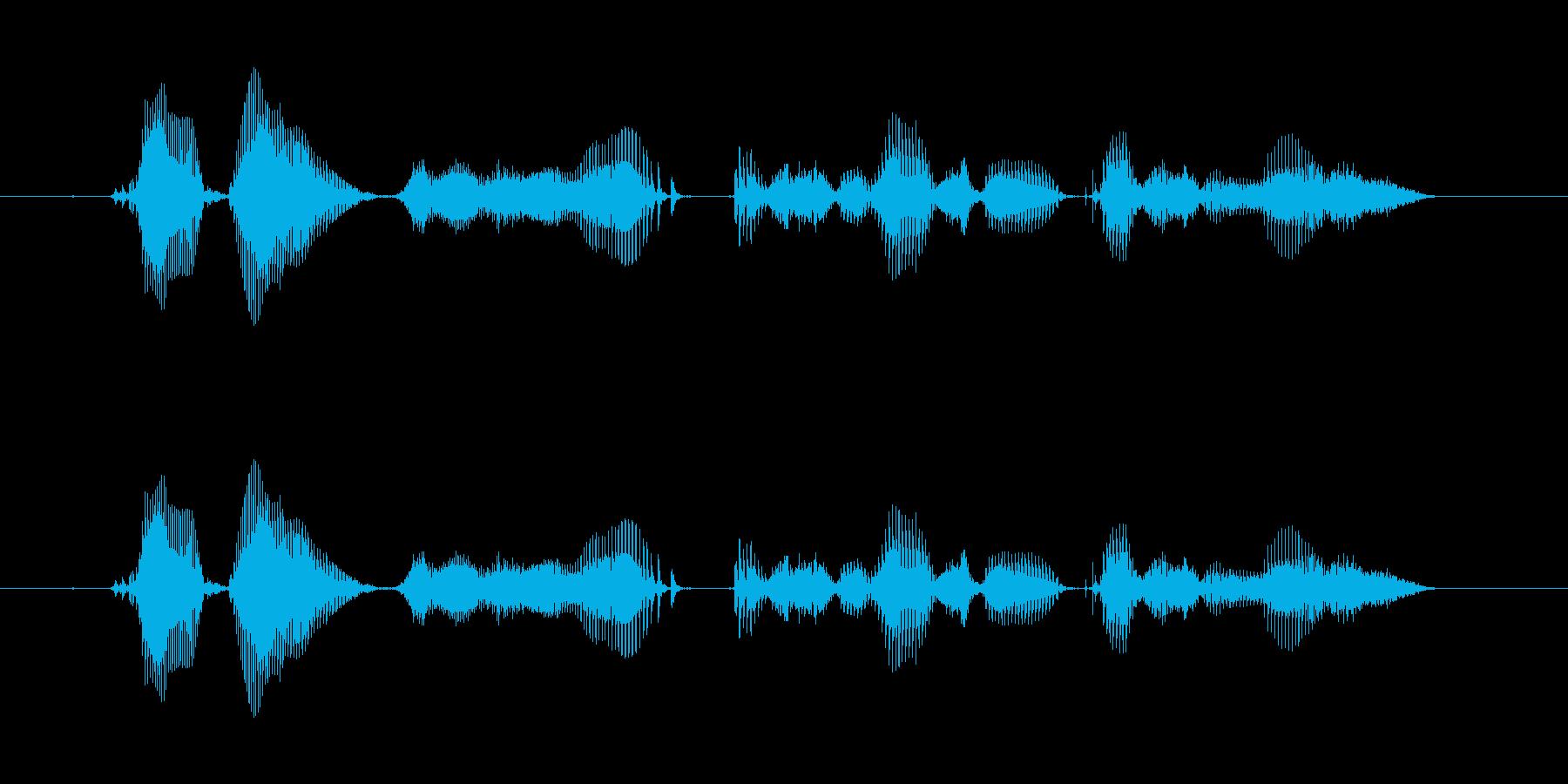 【時報・時間】午後1時を、お知らせいた…の再生済みの波形