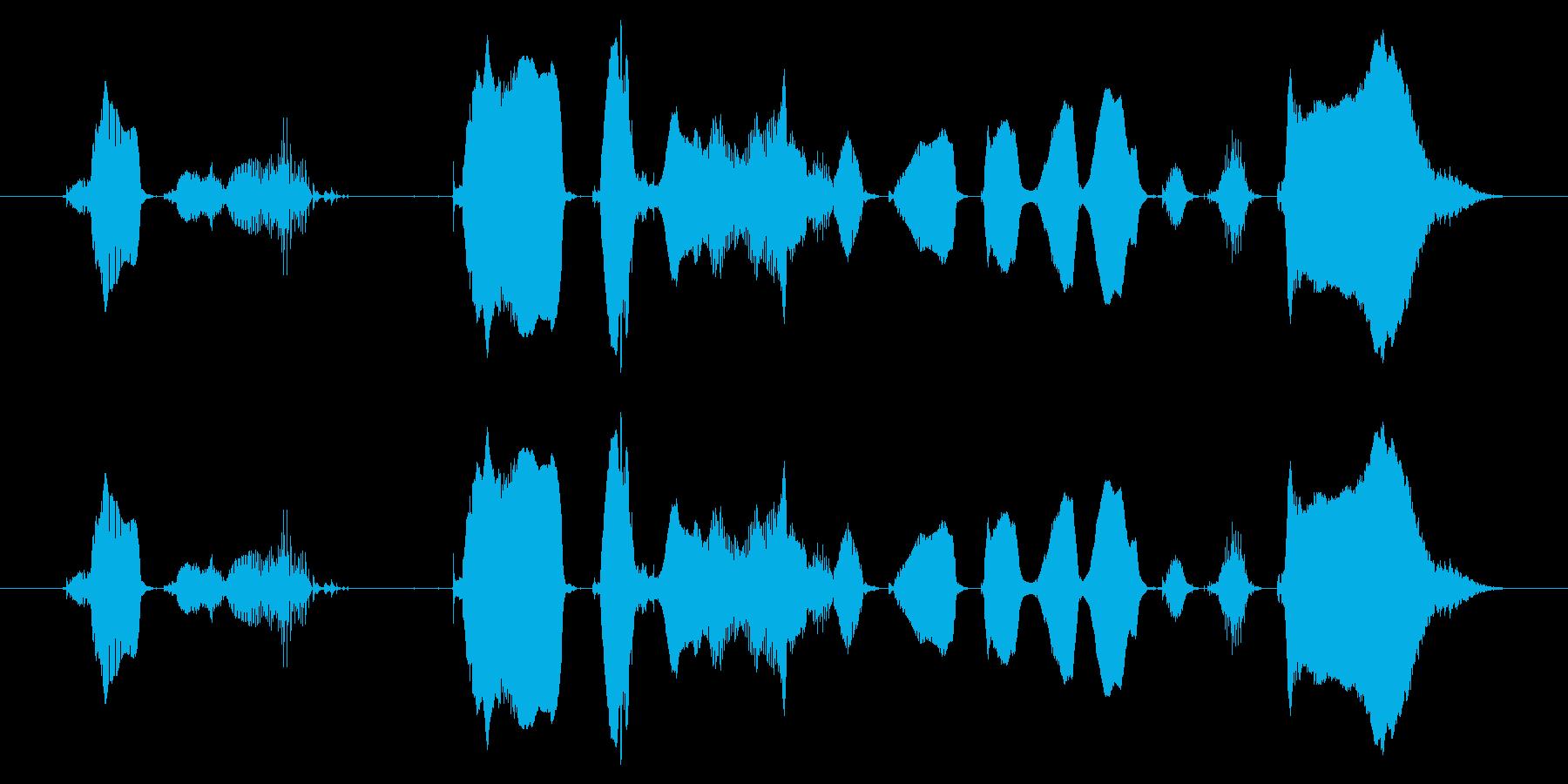 【ラジオ・パーソナリティ・ED】今日こ…の再生済みの波形