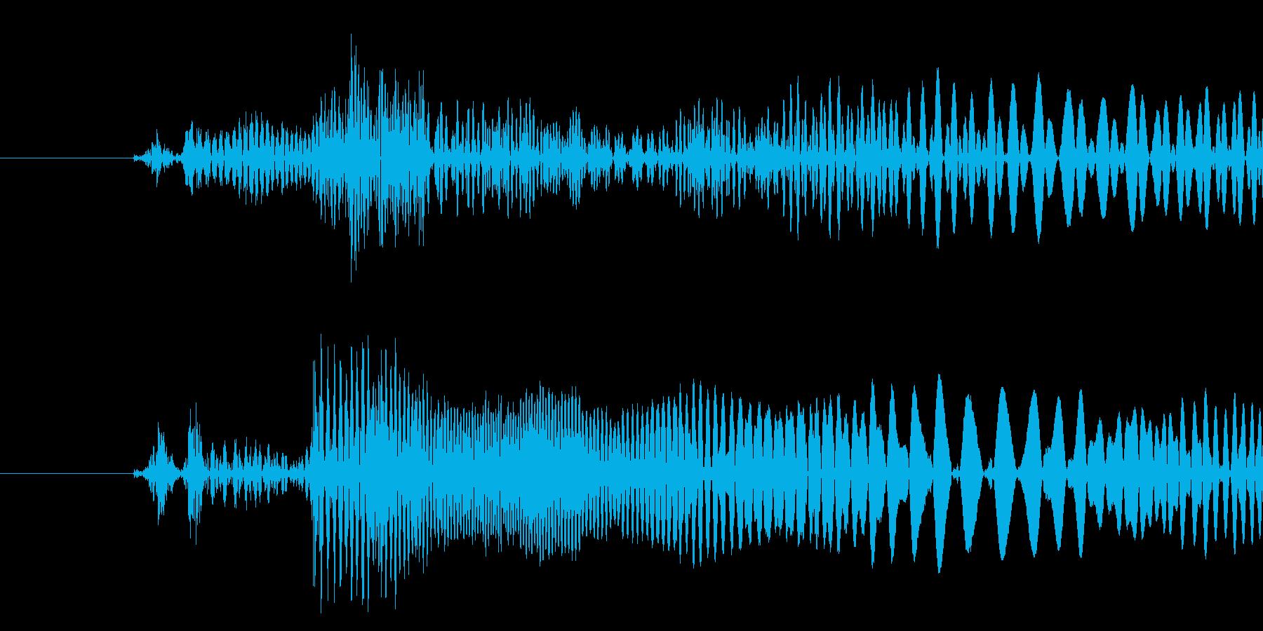 決定音(中音)の再生済みの波形