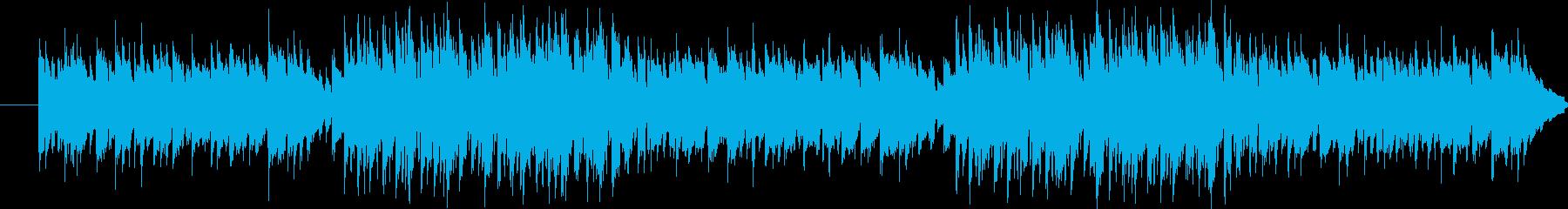 サンフランシスコのファーマーズマーケッ…の再生済みの波形