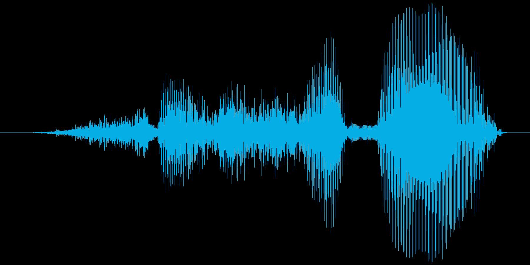 さすが!【ロリキャラの褒めボイス】の再生済みの波形