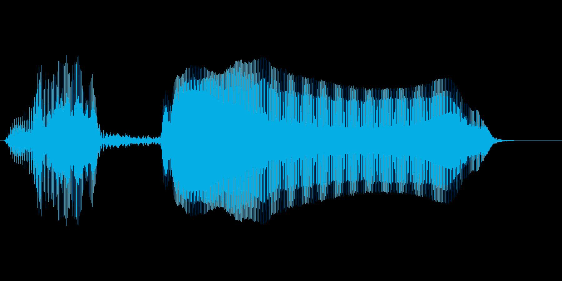 やっほーの再生済みの波形