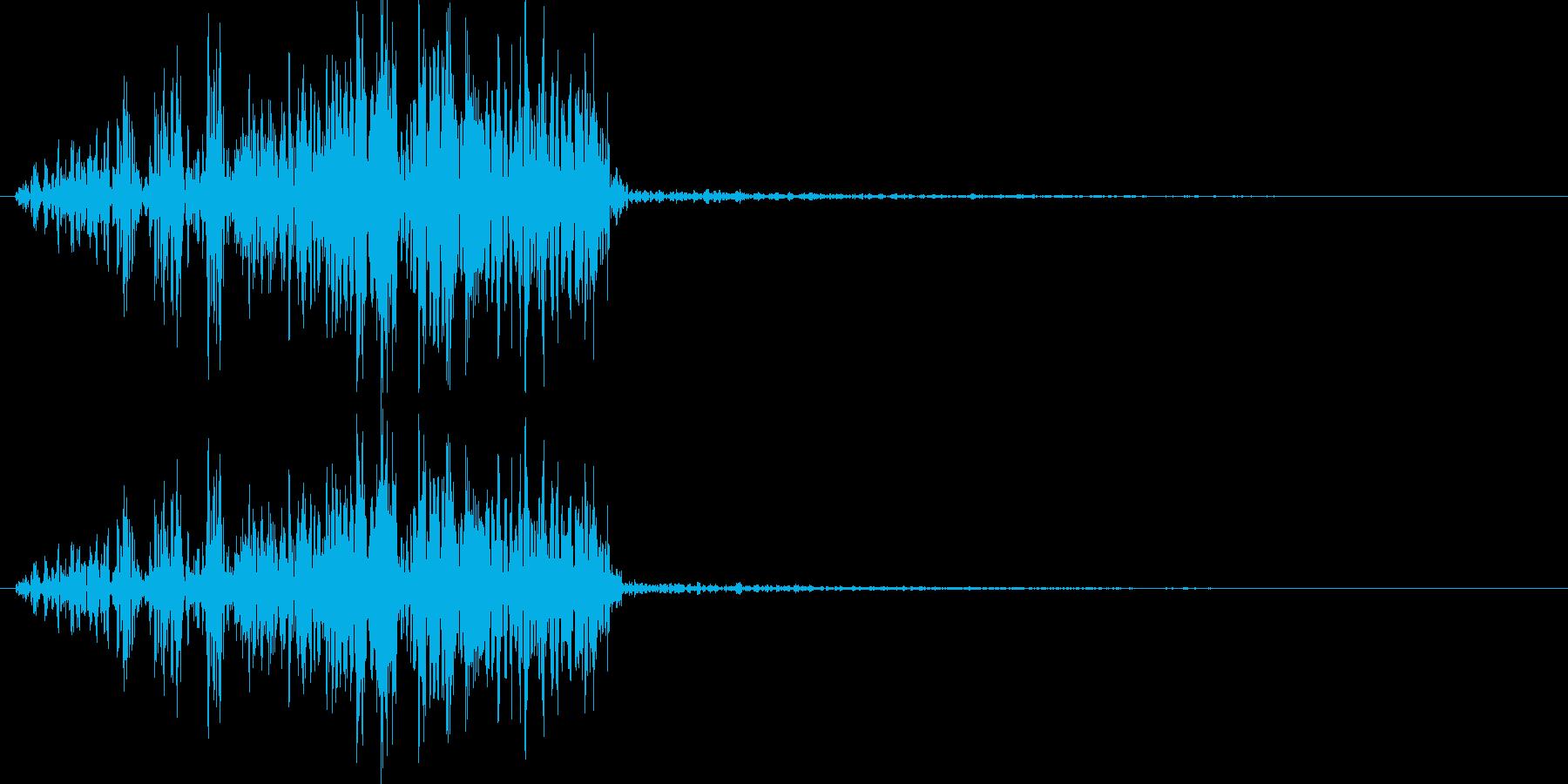 アフリカライオンの鳴き声(叫びに近い)の再生済みの波形