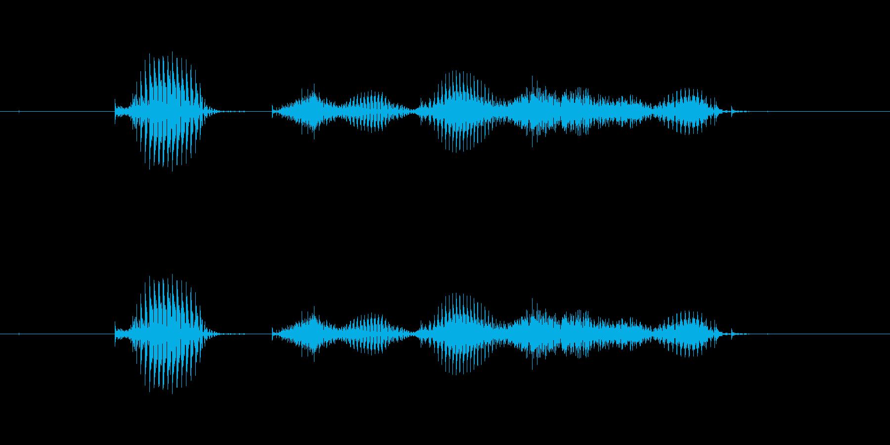 【干支】タツ年の再生済みの波形