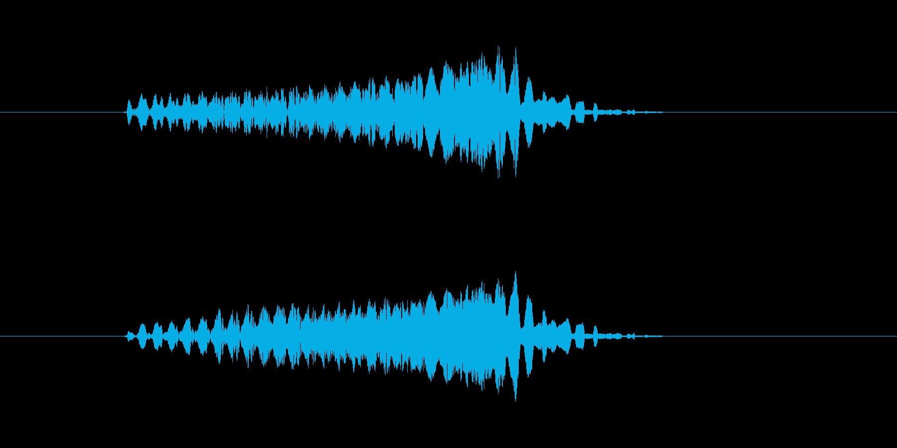 ピュルルルルル↑(電子音、SF)の再生済みの波形