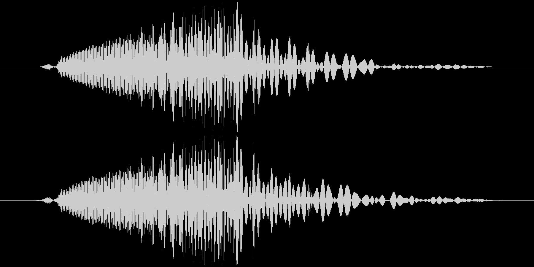 ドラゴン/龍など 鳴き声 クゥールルルッの未再生の波形