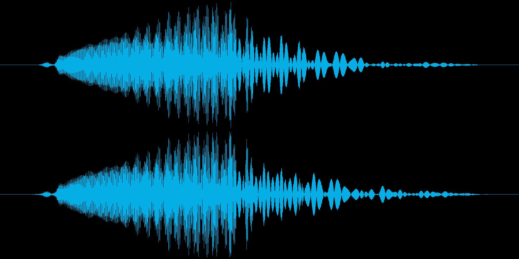 ドラゴン/龍など 鳴き声 クゥールルルッの再生済みの波形